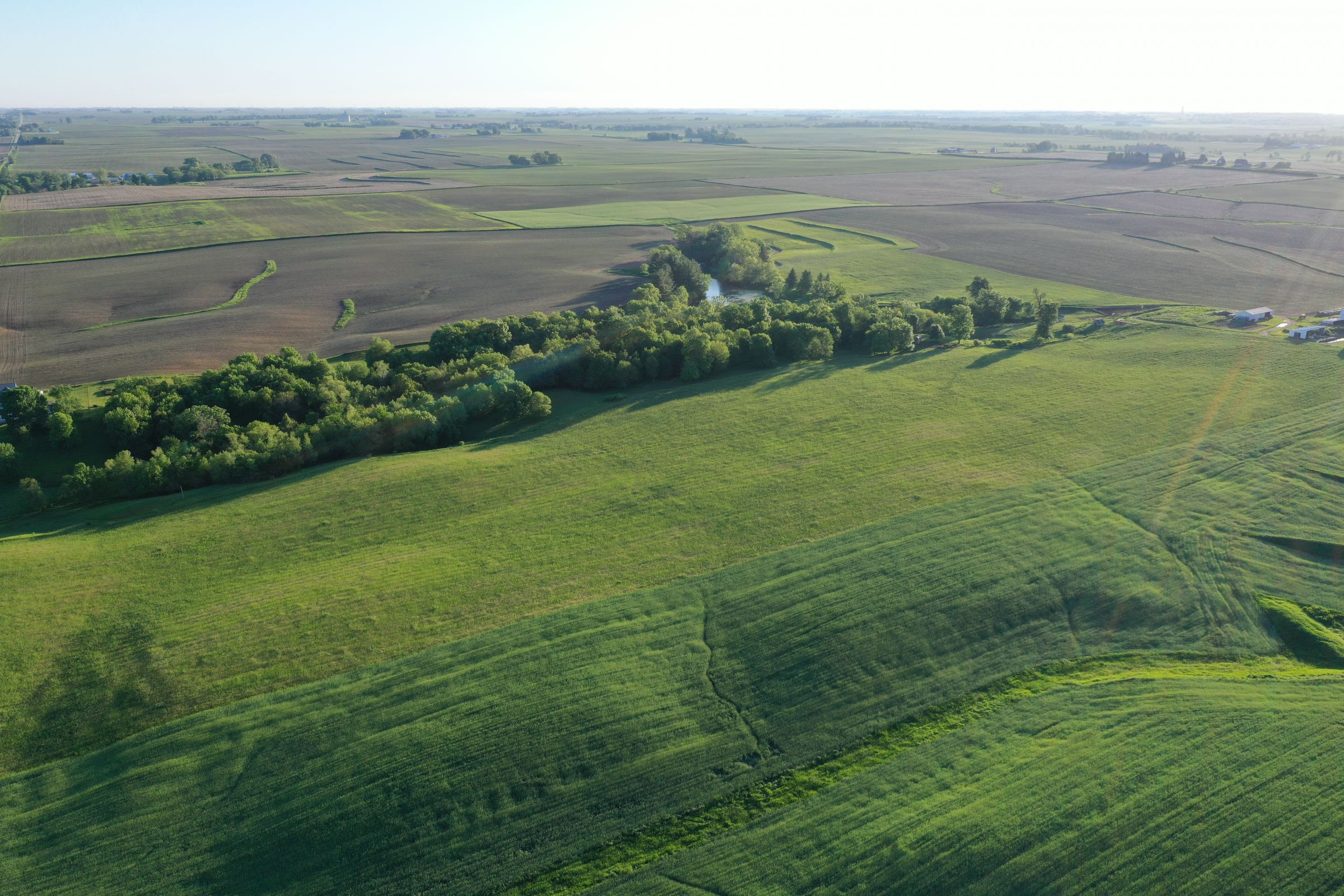 Jasper County Iowa Farm Land for Sale