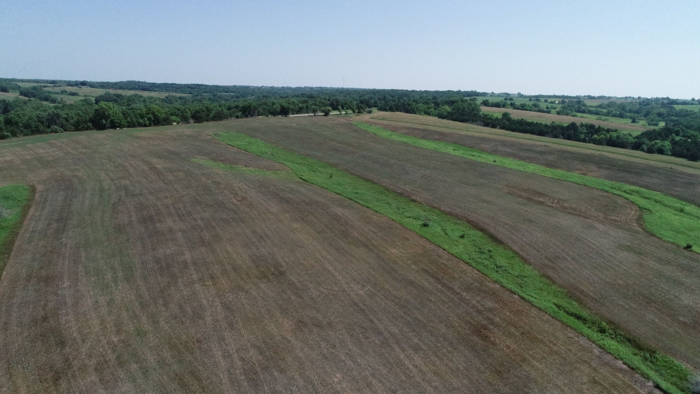 land-decatur-county-iowa-40-acres-listing-number-15069-0-2020-07-13-190423.JPG