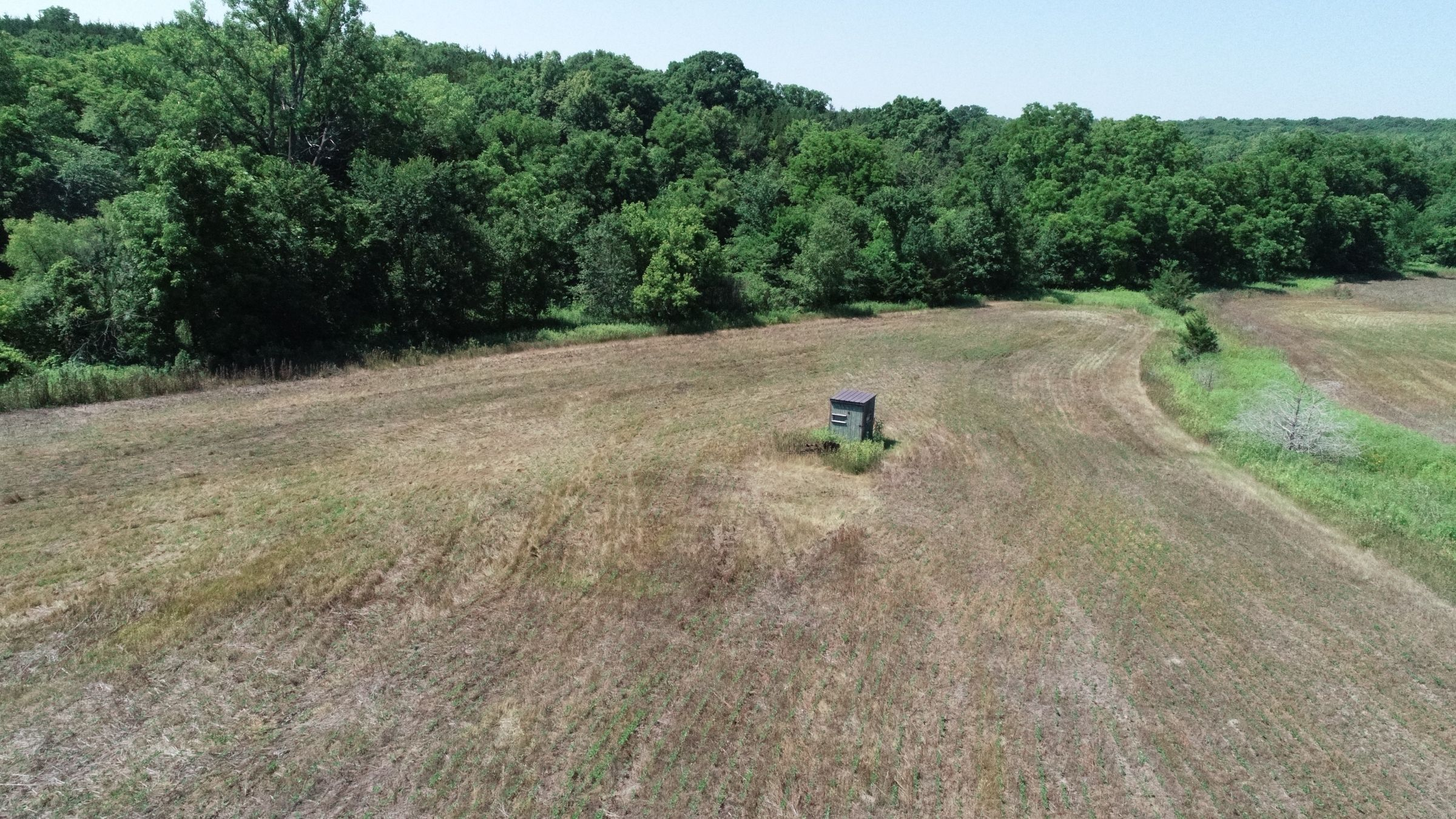 land-decatur-county-iowa-40-acres-listing-number-15069-2-2020-07-13-190427.JPG