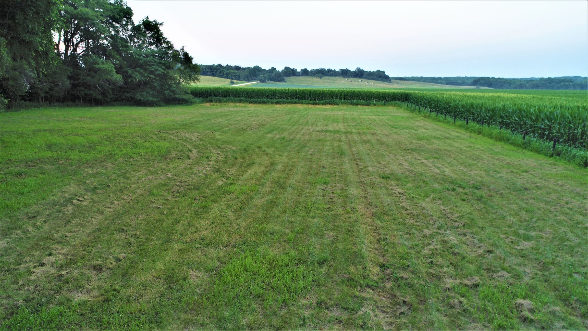 land-dallas-county-iowa-4-acres-listing-number-15072-10-2020-07-17-172631.JPG