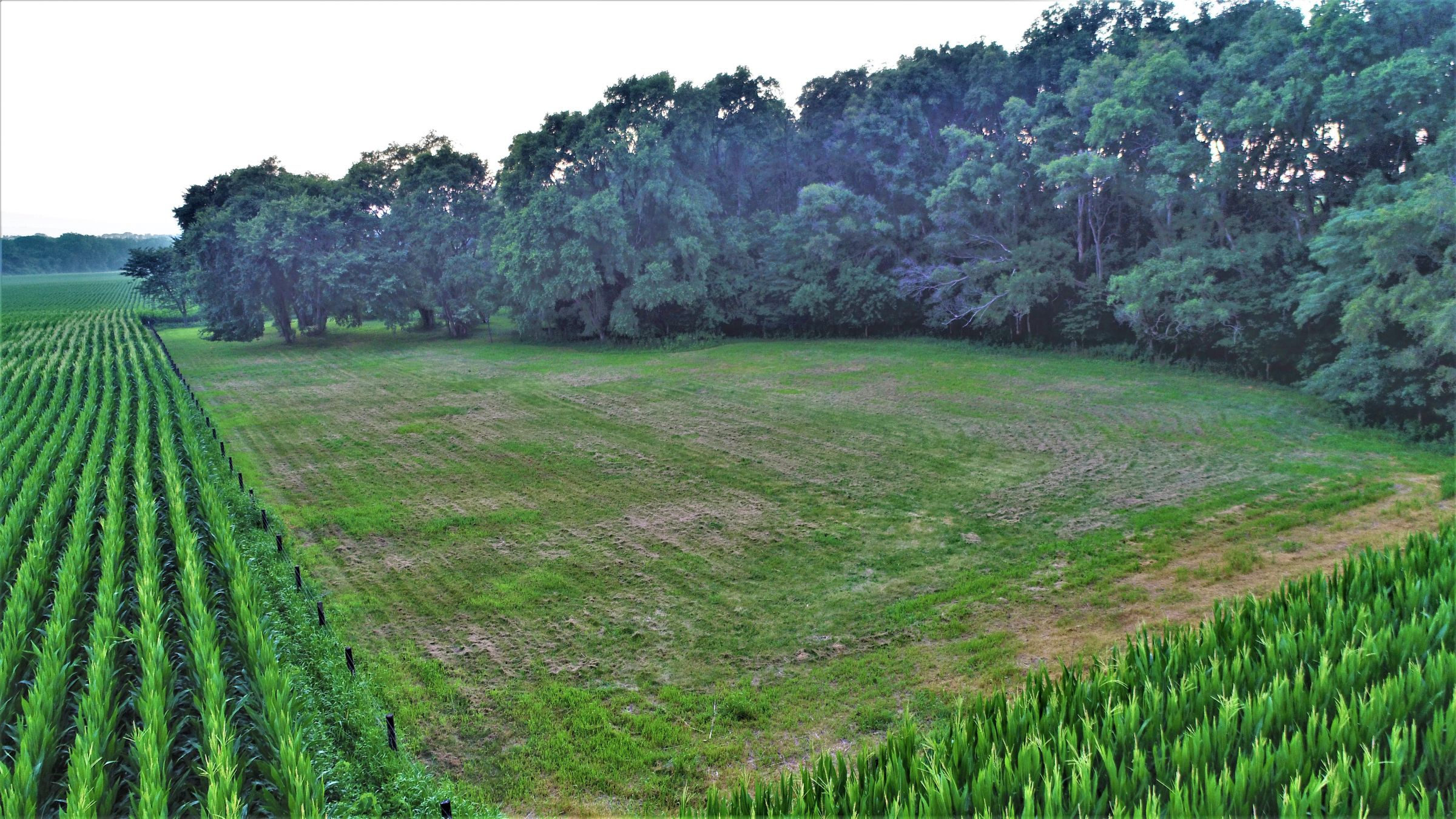 land-dallas-county-iowa-4-acres-listing-number-15072-11-2020-07-17-172634.JPG