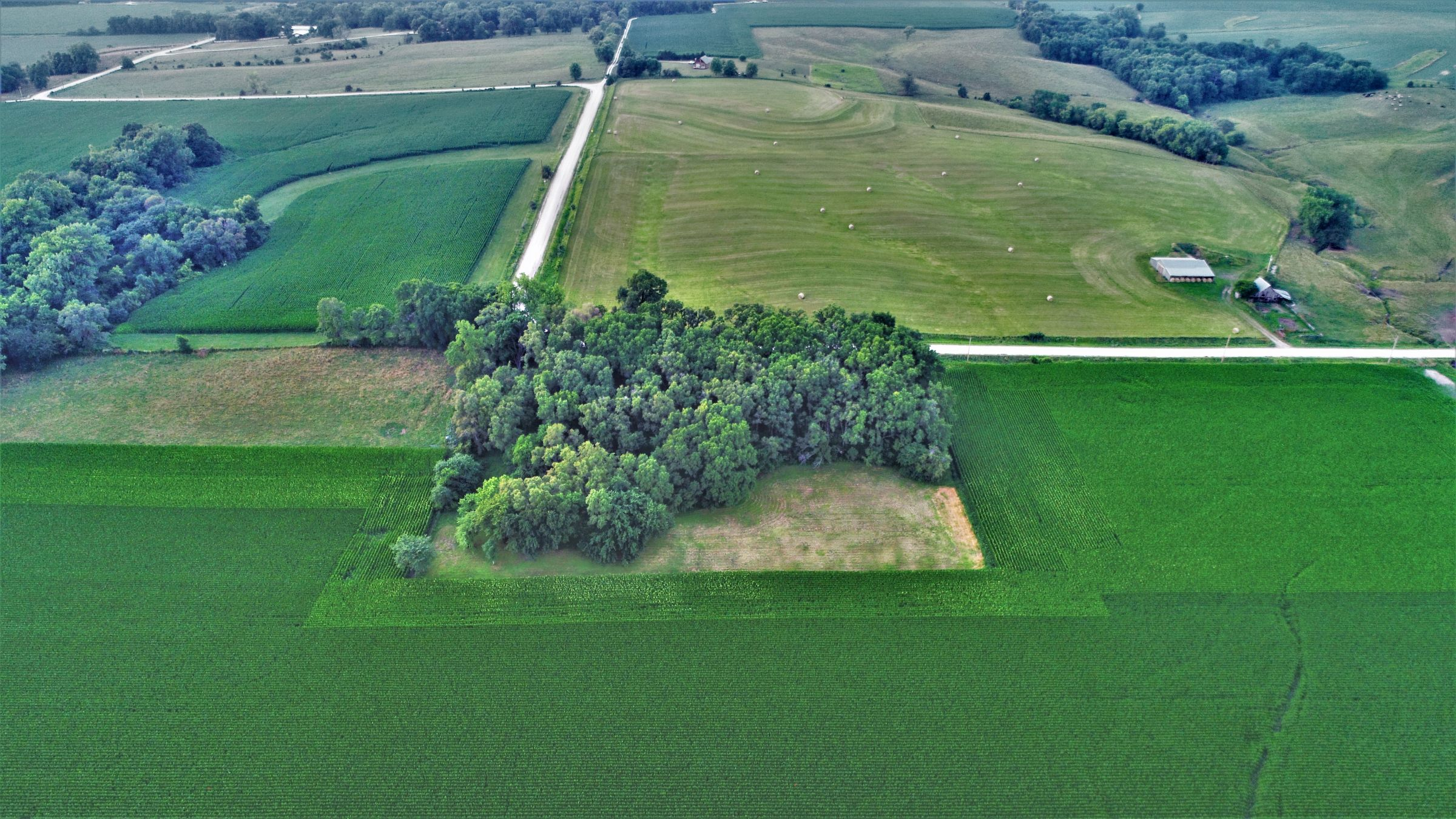 land-dallas-county-iowa-4-acres-listing-number-15072-4-2020-07-17-172621.JPG