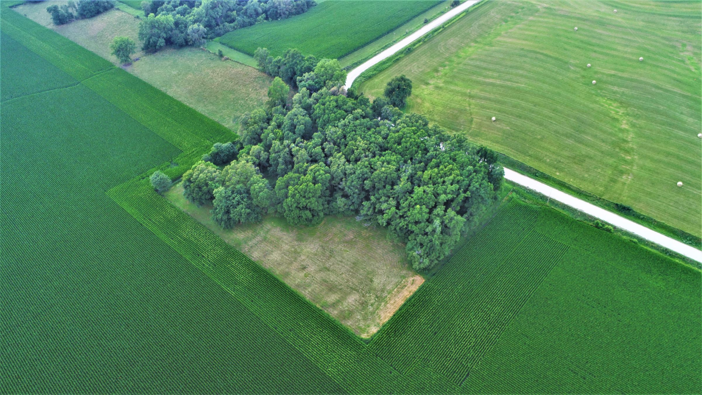 land-dallas-county-iowa-4-acres-listing-number-15072-5-2020-07-17-172622.JPG