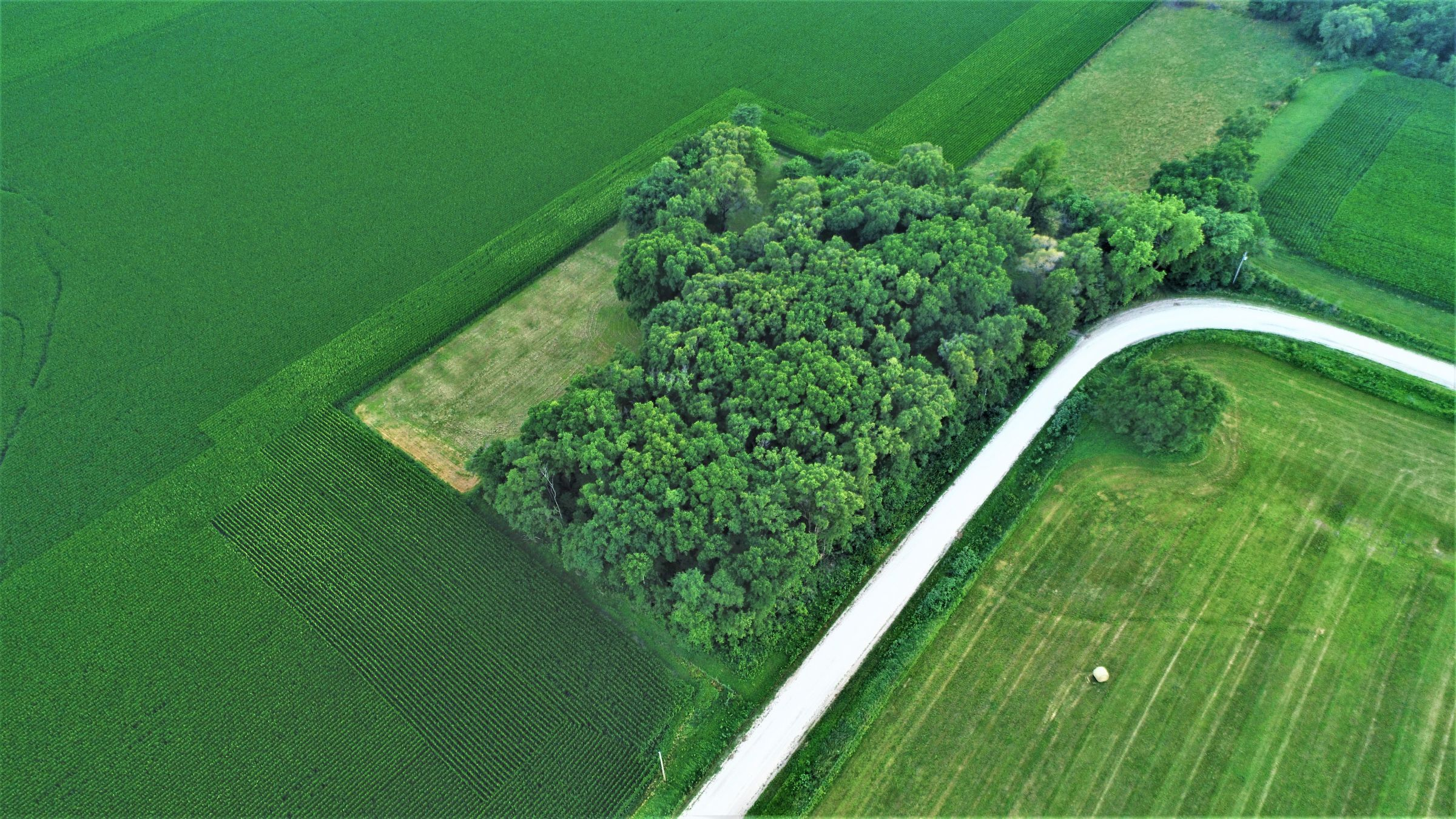 land-dallas-county-iowa-4-acres-listing-number-15072-7-2020-07-17-172625.JPG
