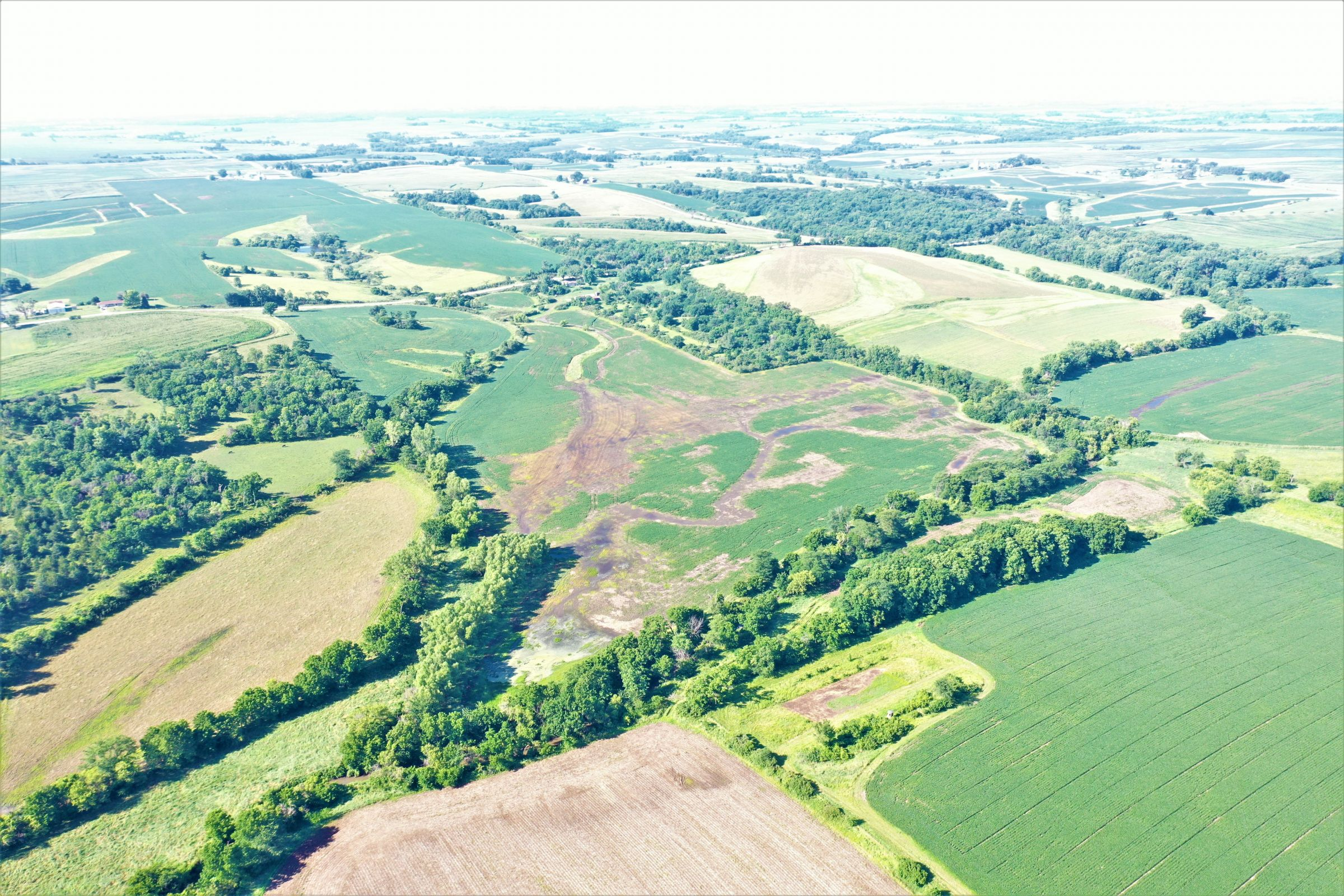 land-marion-county-iowa-163-acres-listing-number-15077-2-2020-07-17-171941.jpg