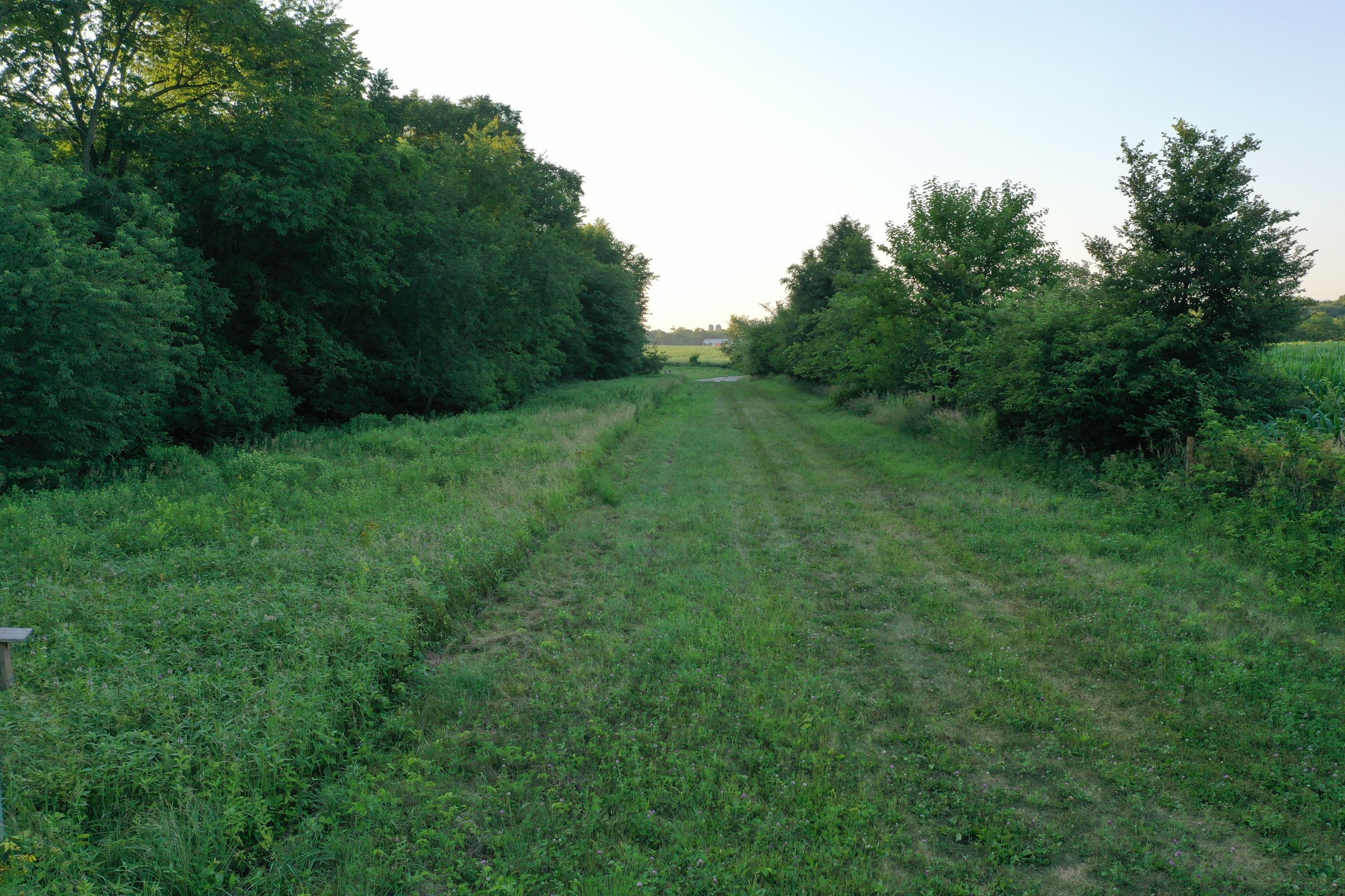 land-dallas-county-iowa-55-acres-listing-number-15081-4-2020-07-23-162424.JPG