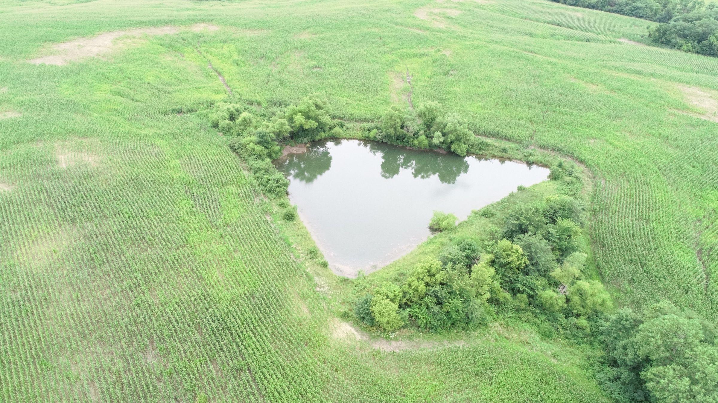 0-acres-listing-number-15090-0-2020-07-24-152817.JPG