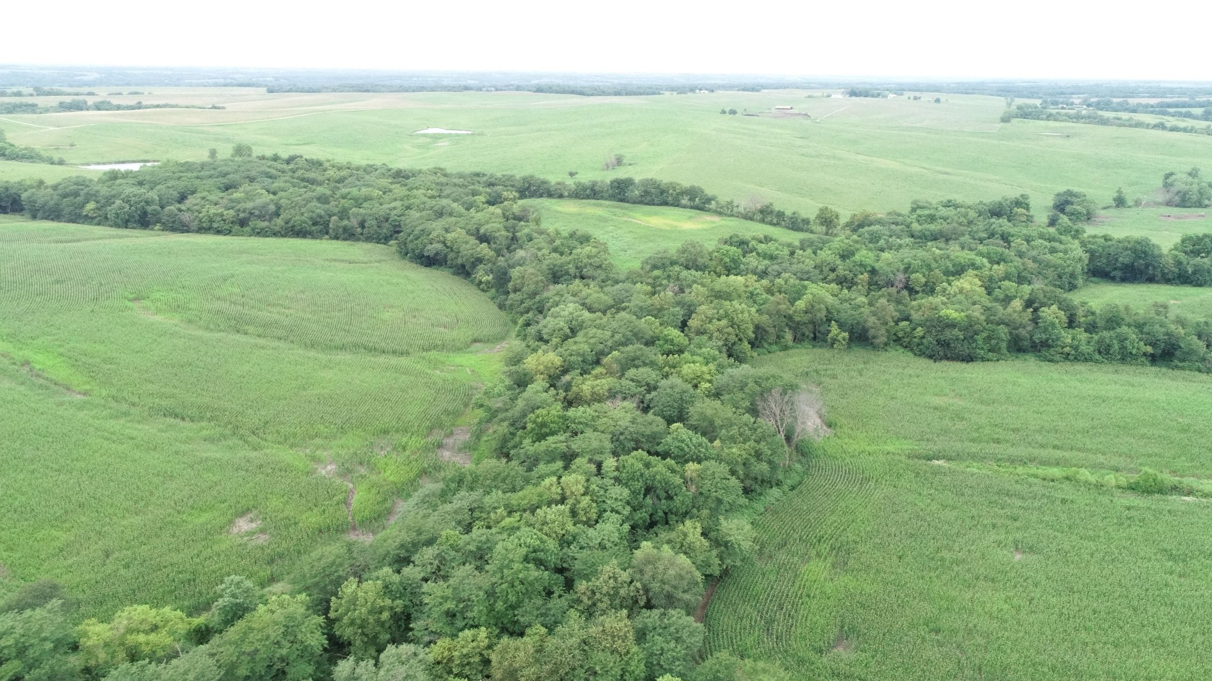 0-acres-listing-number-15090-1-2020-07-24-152819.JPG