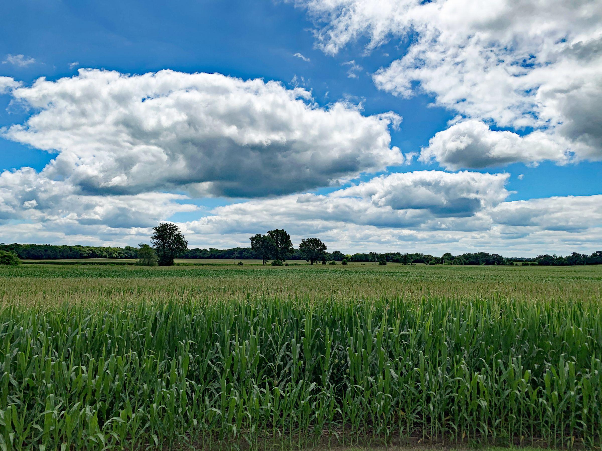 land-winnebago-county-illinois-127-acres-listing-number-15094-8-2020-08-03-160431.jpg