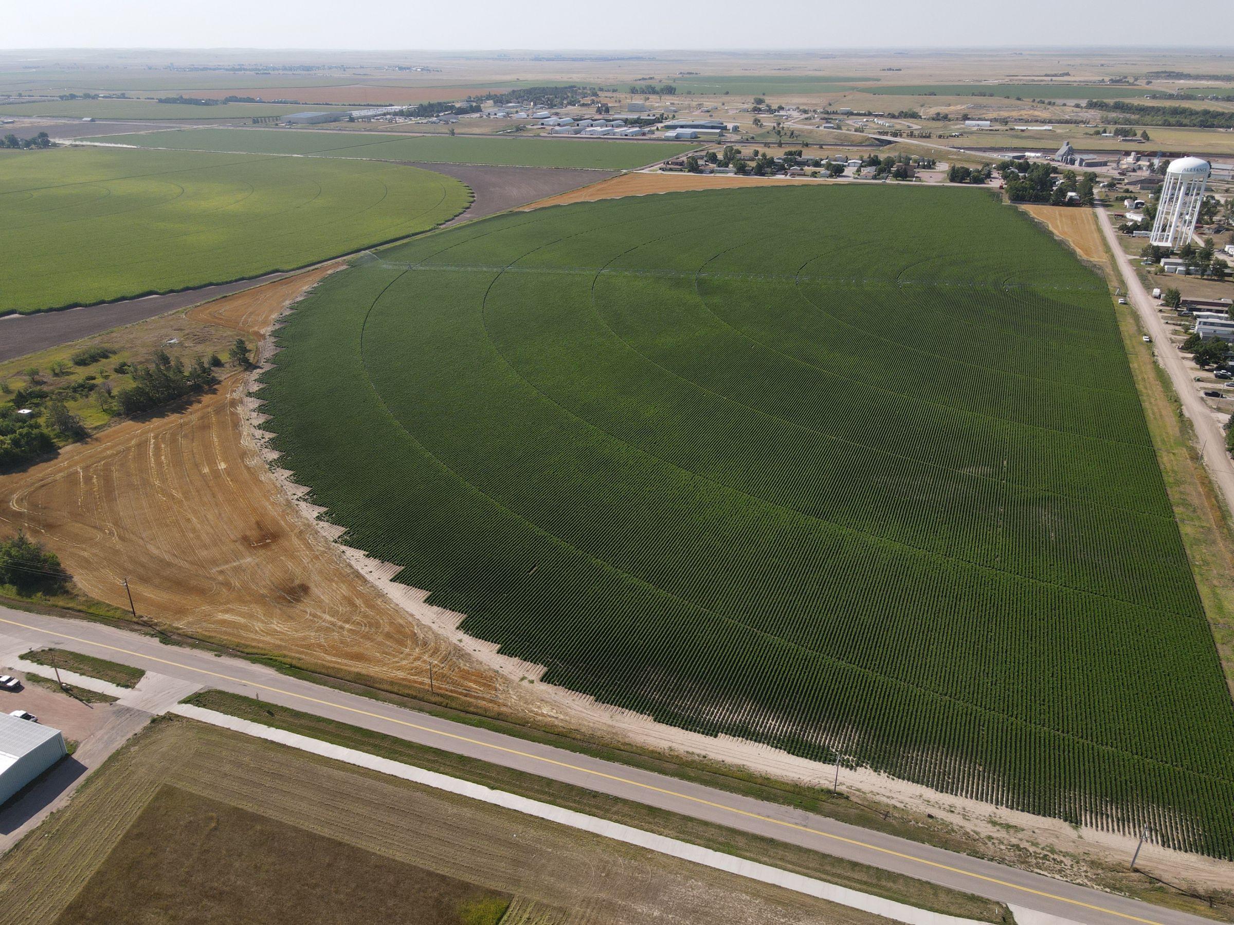 land-box-butte-county-nebraska-73-acres-listing-number-15097-0-2020-08-07-162359.JPG