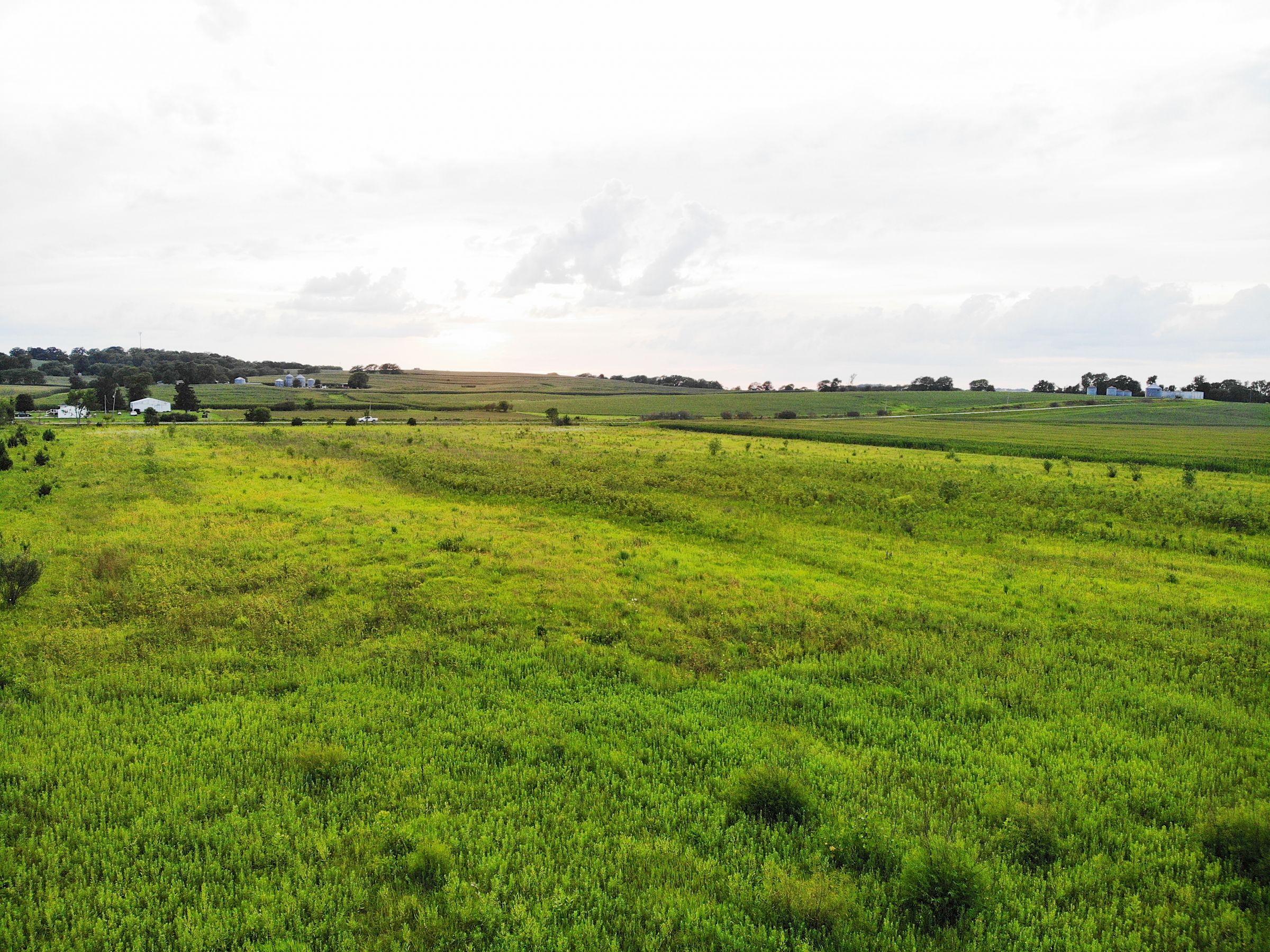 land-warren-county-iowa-38-acres-listing-number-15098-3-2020-08-01-153751.jpg