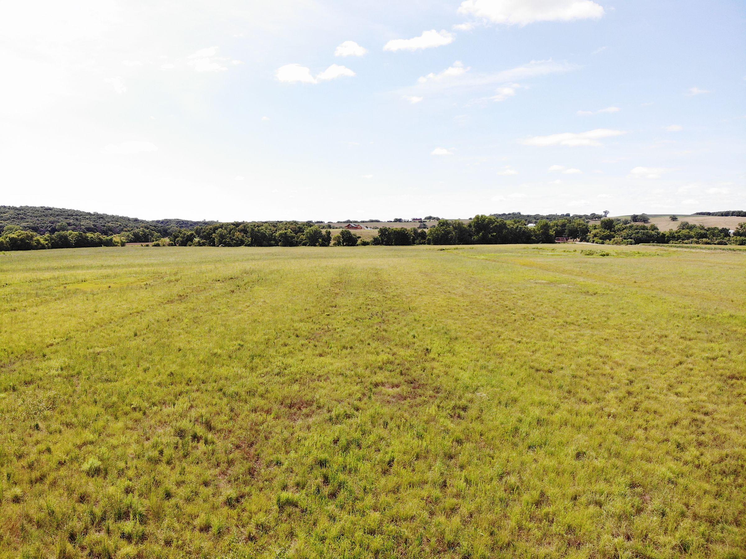 land-warren-county-iowa-84-acres-listing-number-15103-3-2020-08-05-144420.jpg