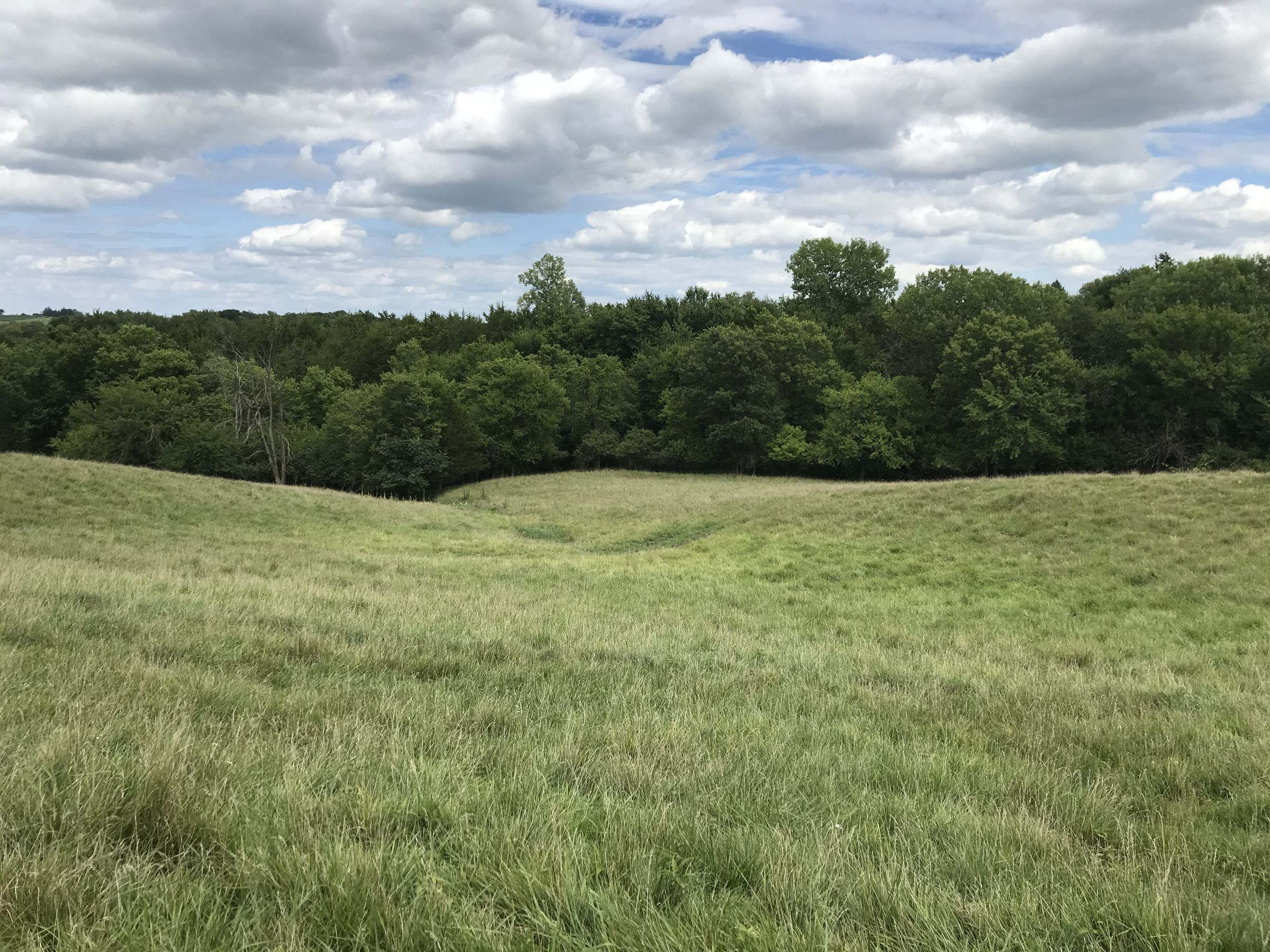 warren-county-iowa-0-acres-listing-number-15104-11-2020-08-05-204958.JPG