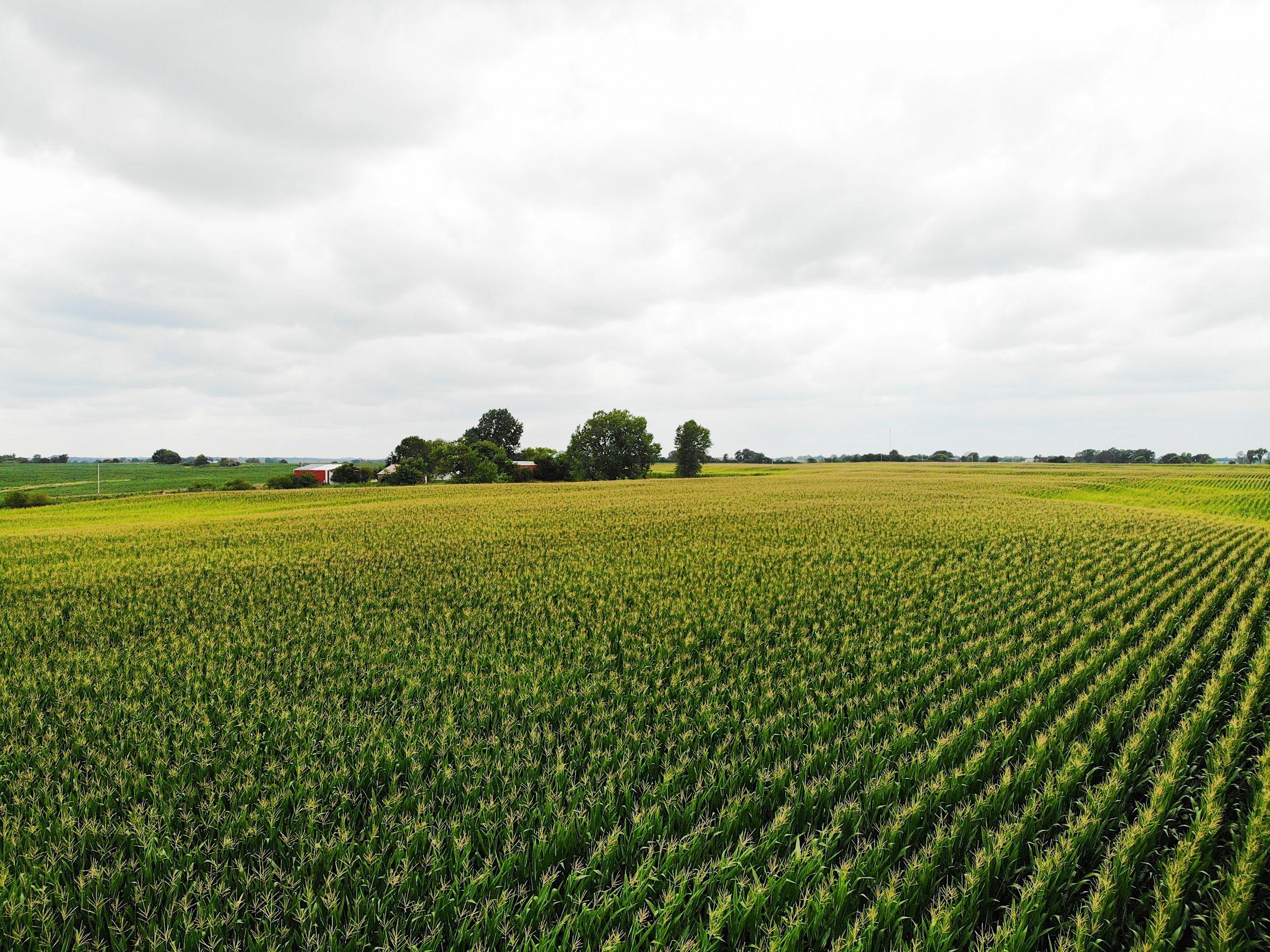 land-clarke-county-iowa-72-acres-listing-number-15106-4-2020-08-09-034305.jpg