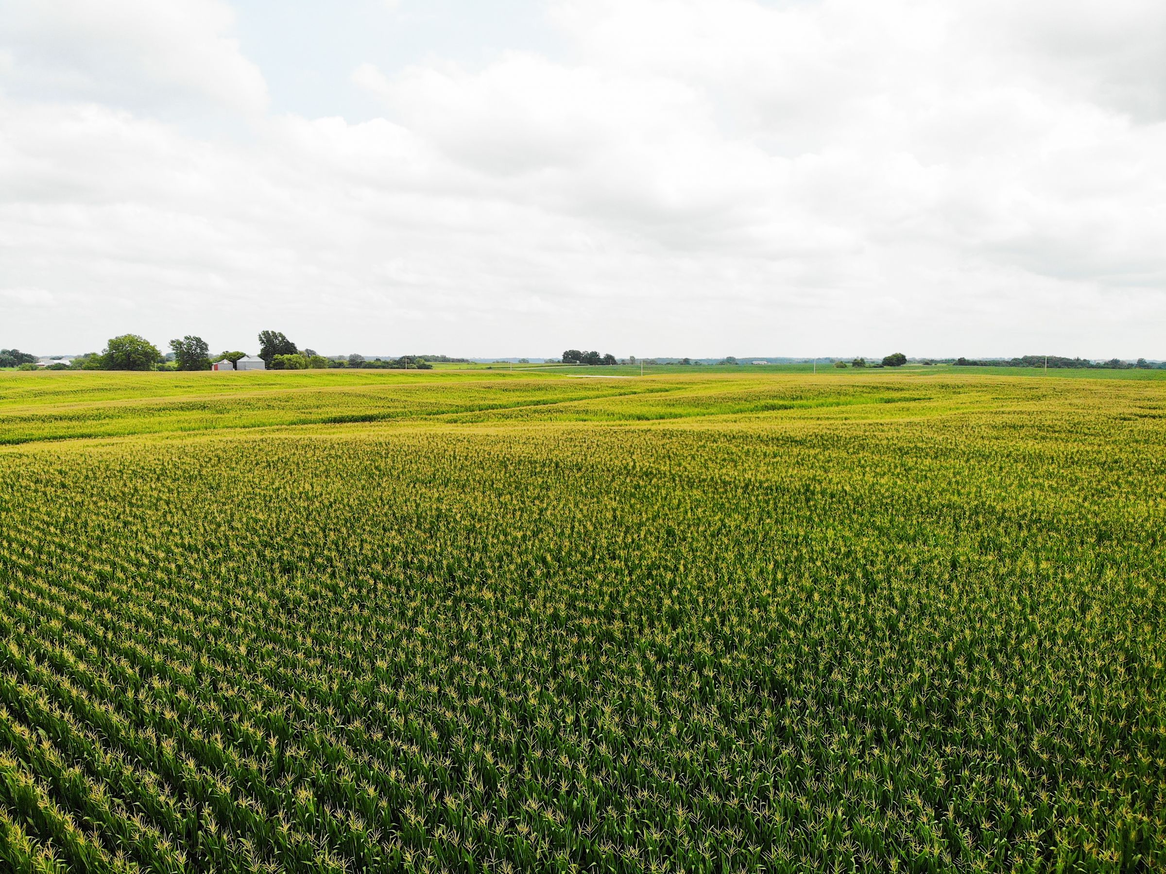 land-clarke-county-iowa-72-acres-listing-number-15106-6-2020-08-09-034308.jpg