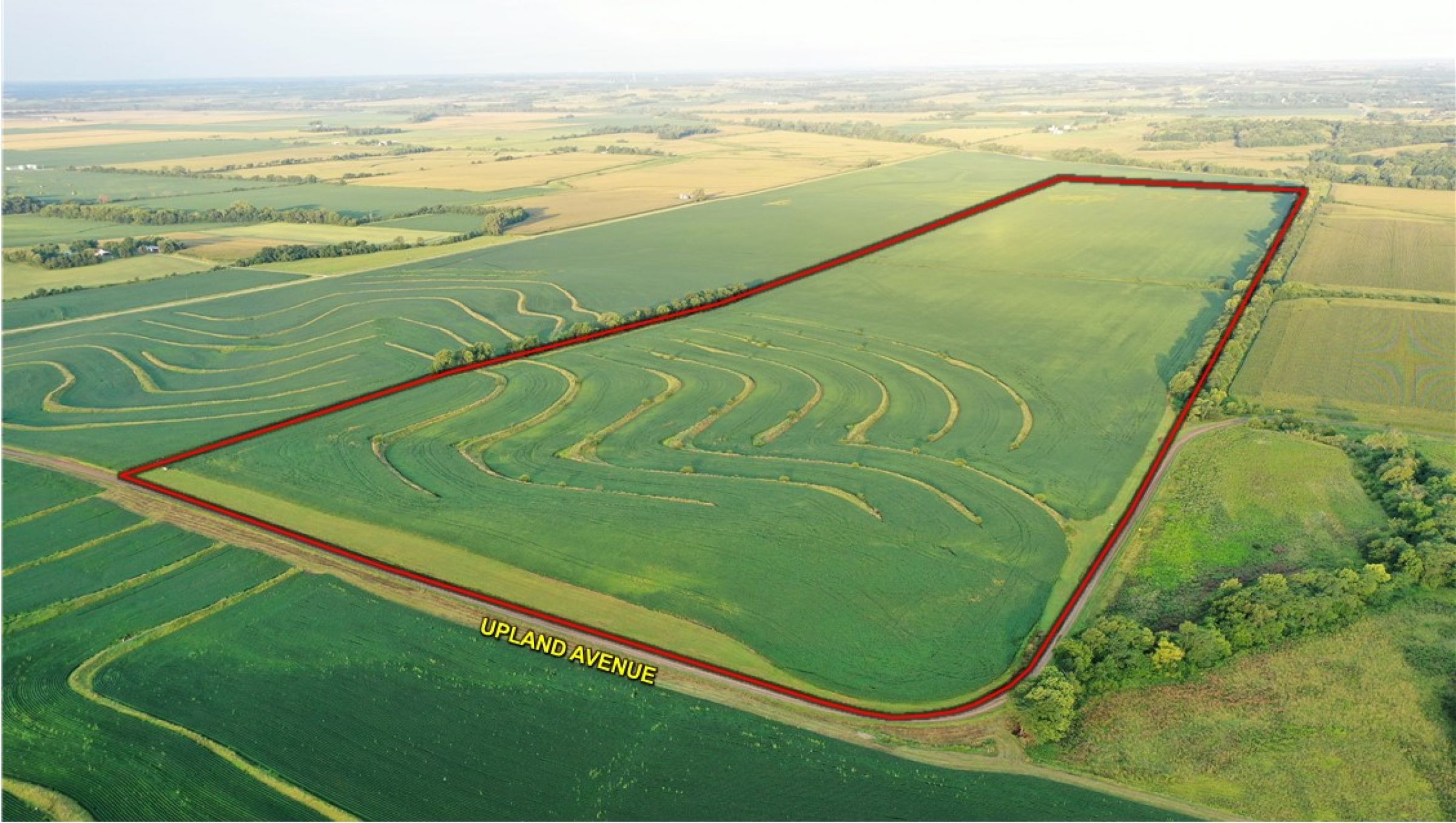 land-page-county-iowa-160-acres-listing-number-15117-0-2020-08-13-162604.jpg