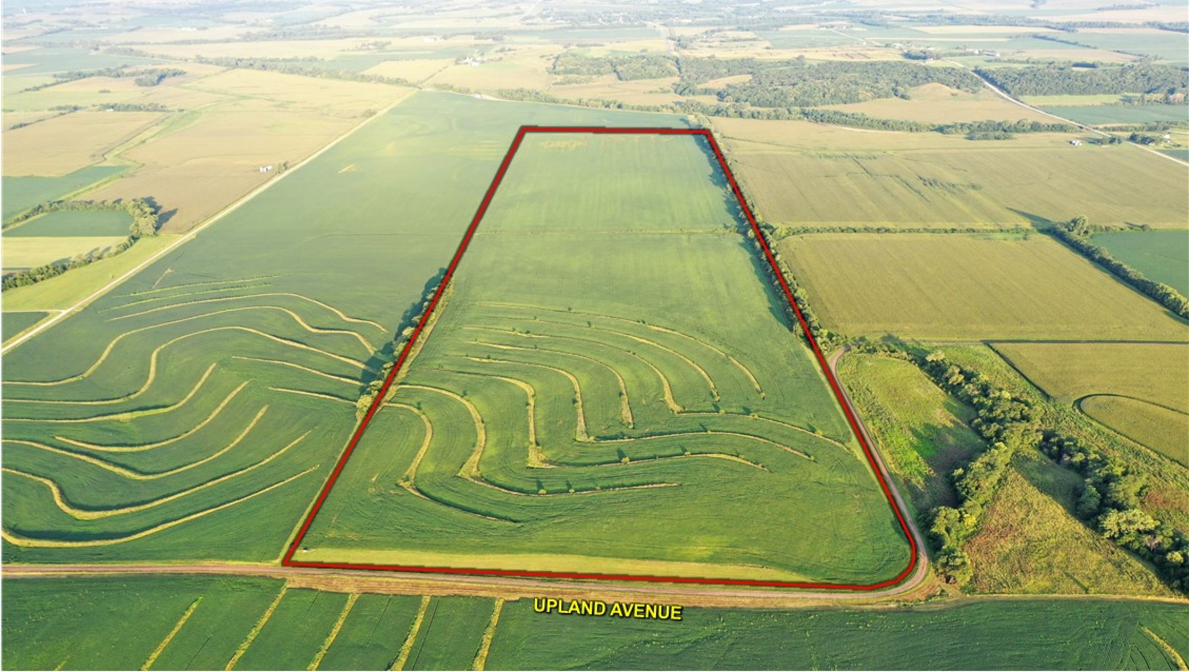 land-page-county-iowa-160-acres-listing-number-15117-0-2020-08-13-175705.jpg