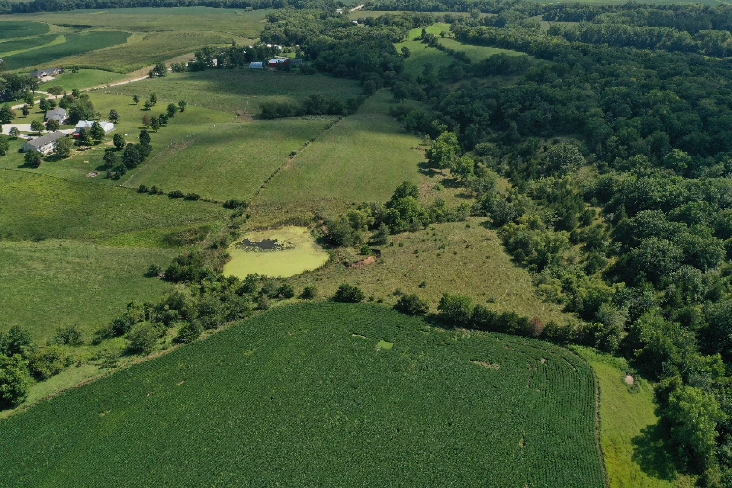 residential-land-warren-county-iowa-29-acres-listing-number-15120-6-2020-08-20-195122.jpg