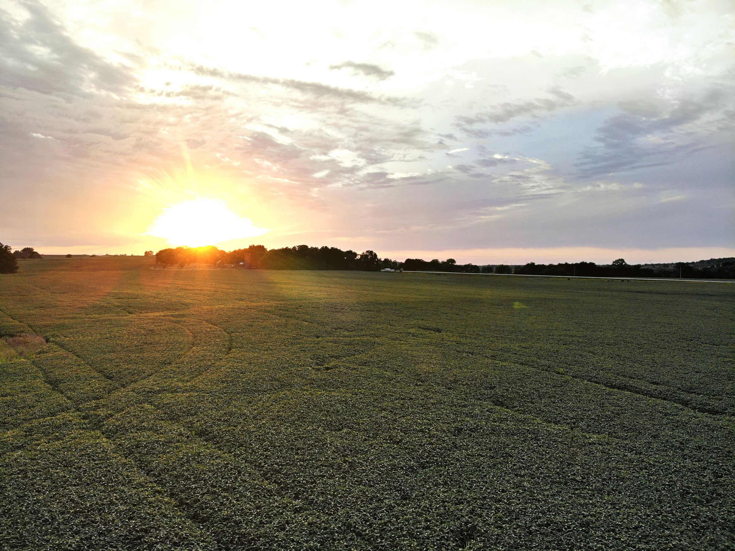 land-madison-county-iowa-123-acres-listing-number-15122-3-2020-08-24-022307.jpg
