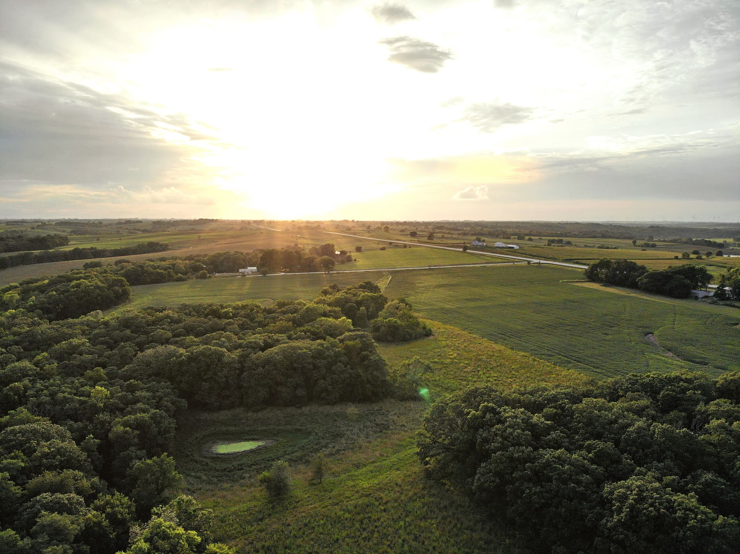 land-madison-county-iowa-123-acres-listing-number-15122-3-2020-08-24-022518.jpg