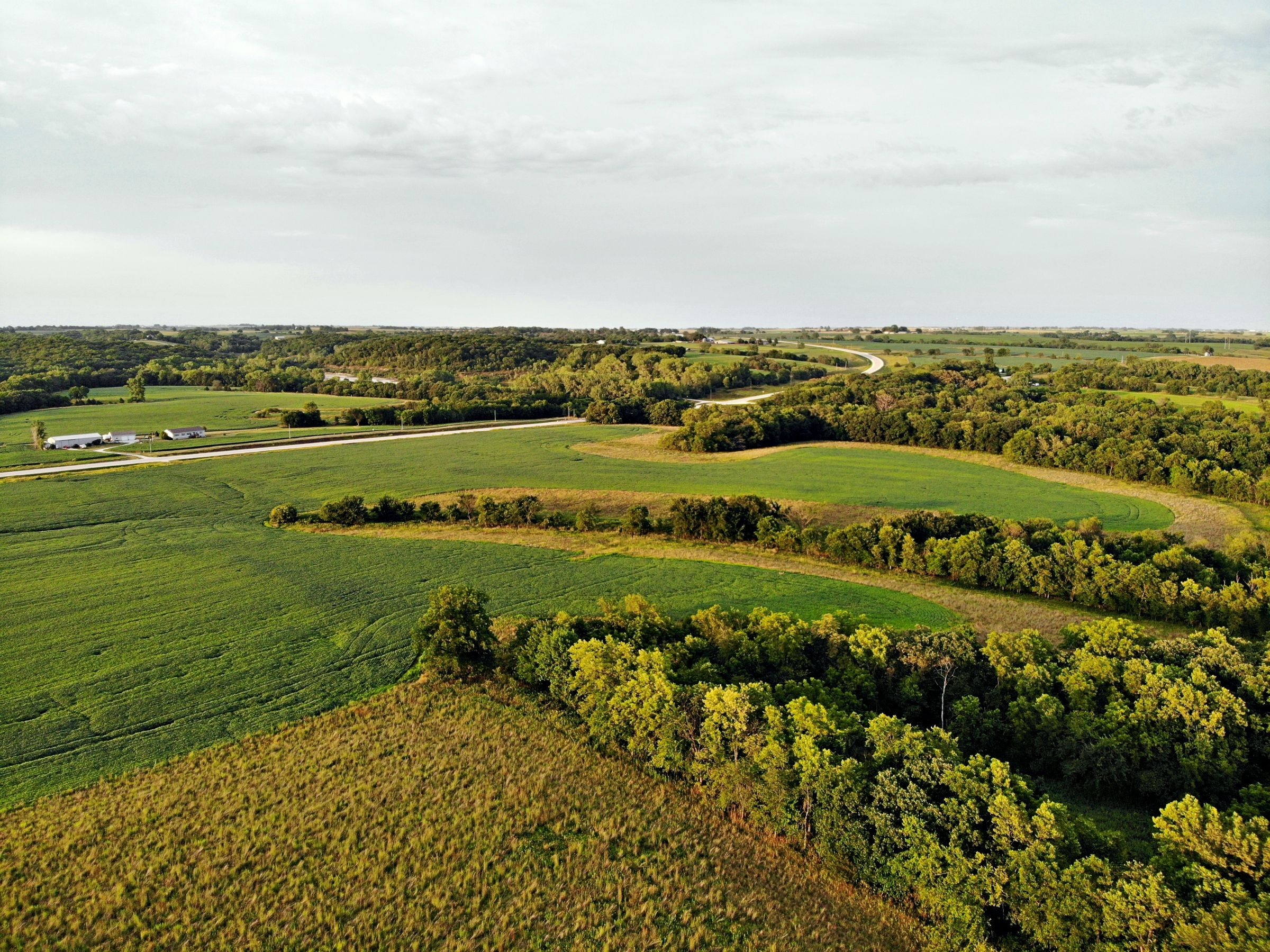 land-madison-county-iowa-123-acres-listing-number-15122-4-2020-08-24-022309.jpg