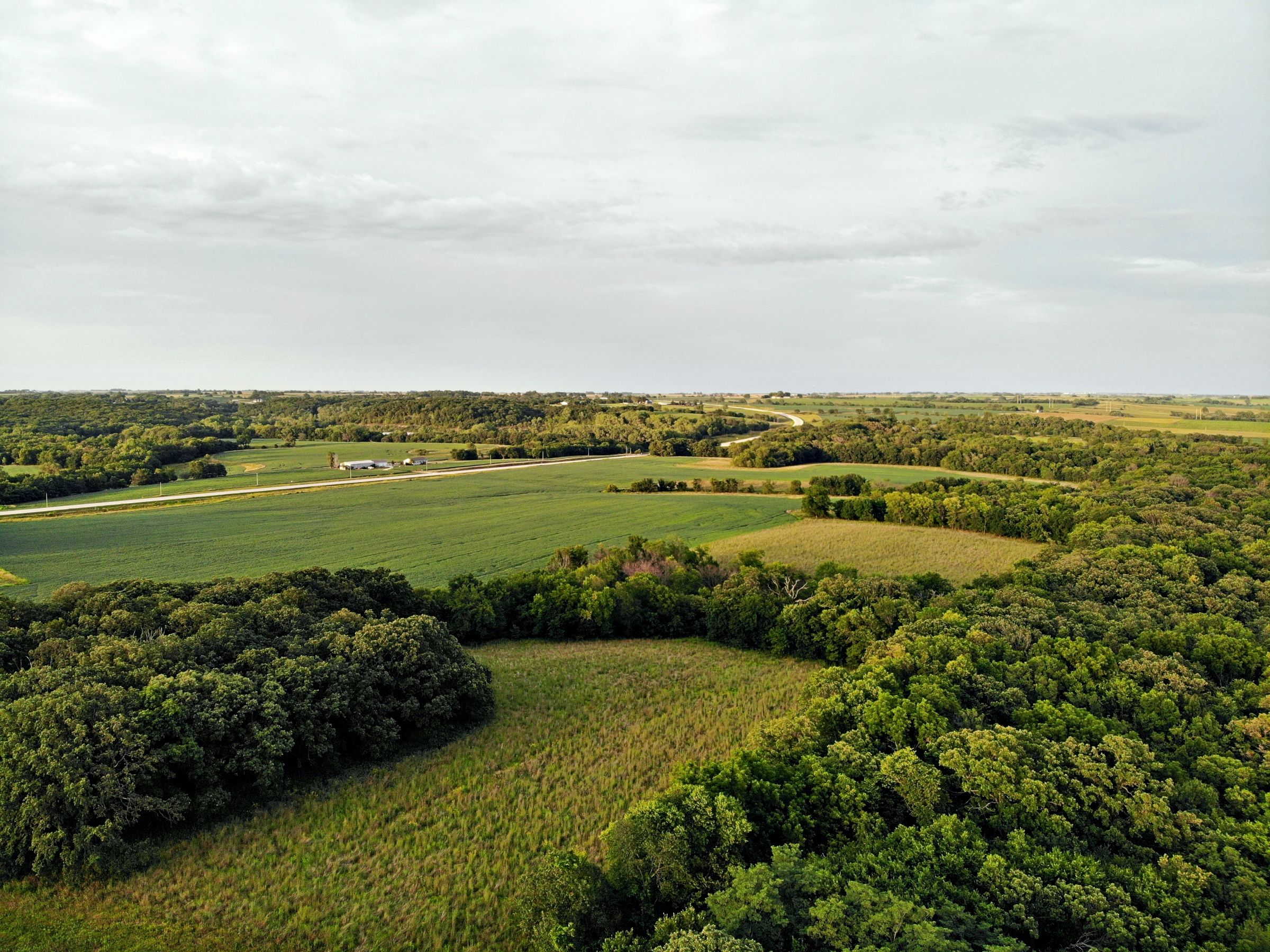 land-madison-county-iowa-123-acres-listing-number-15122-5-2020-08-24-022310.jpg