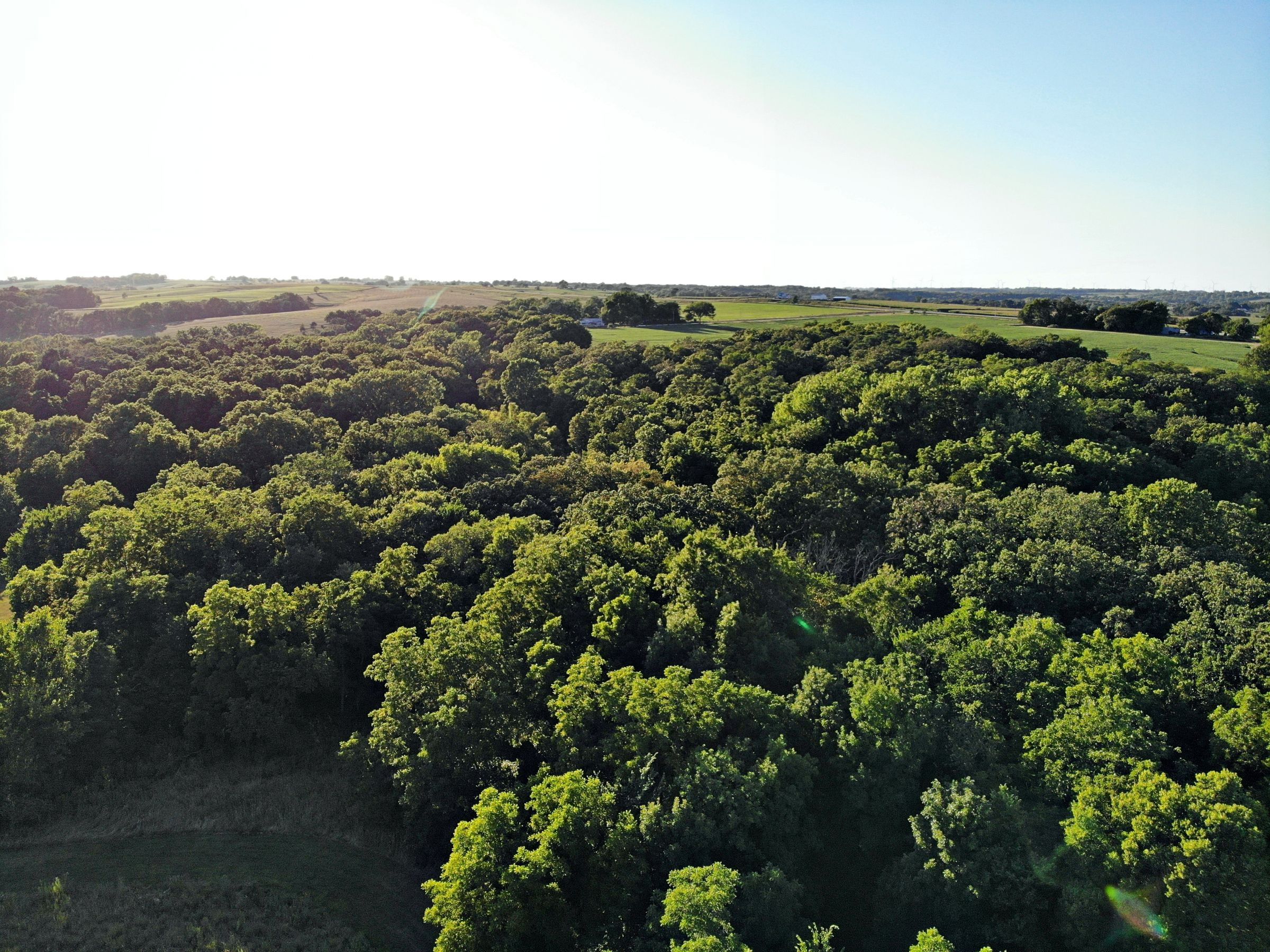 residential-land-madison-county-iowa-106-acres-listing-number-15123-0-2020-08-24-023312.JPG