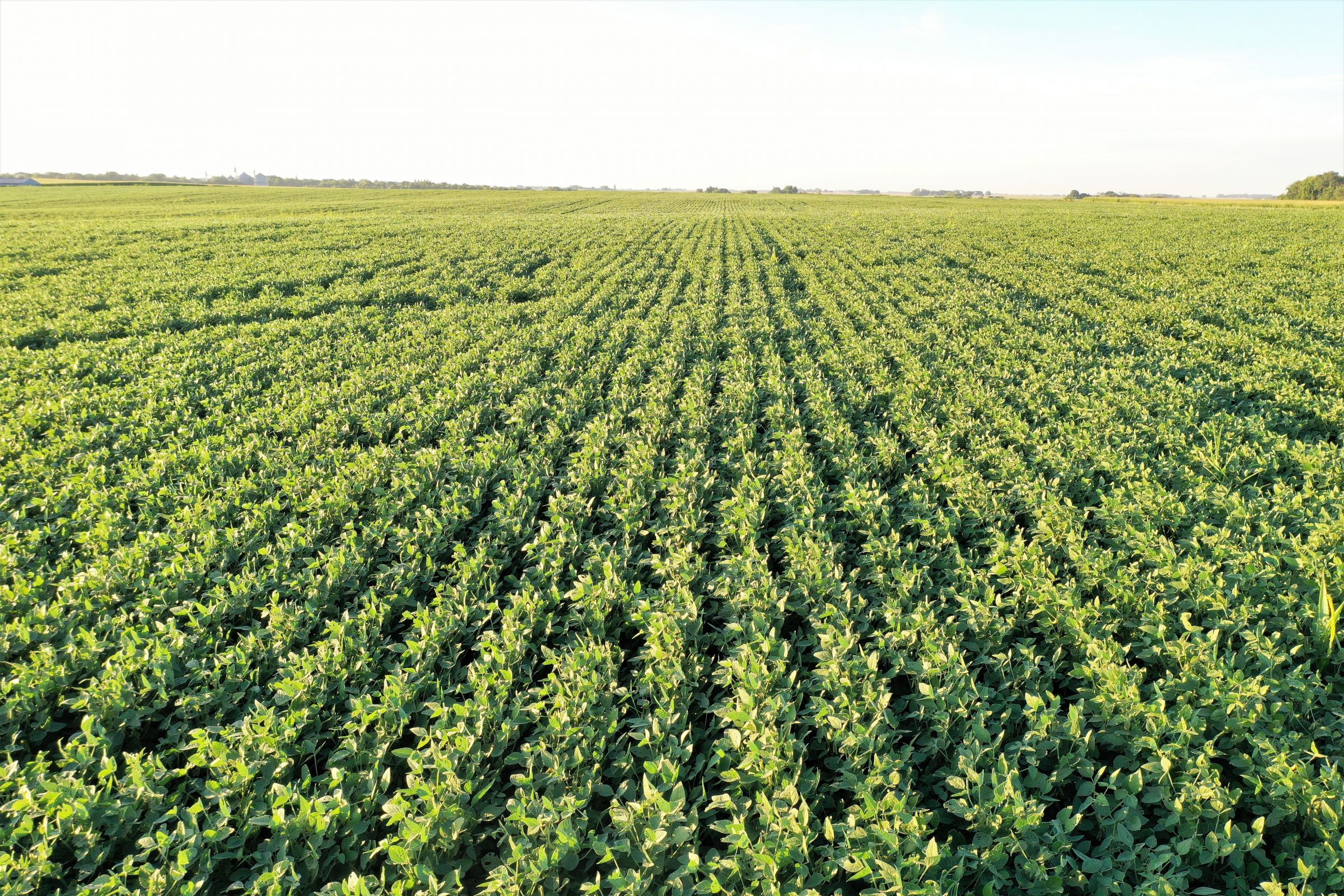 land-butler-county-iowa-157-acres-listing-number-15128-1-2020-08-20-212006.jpg