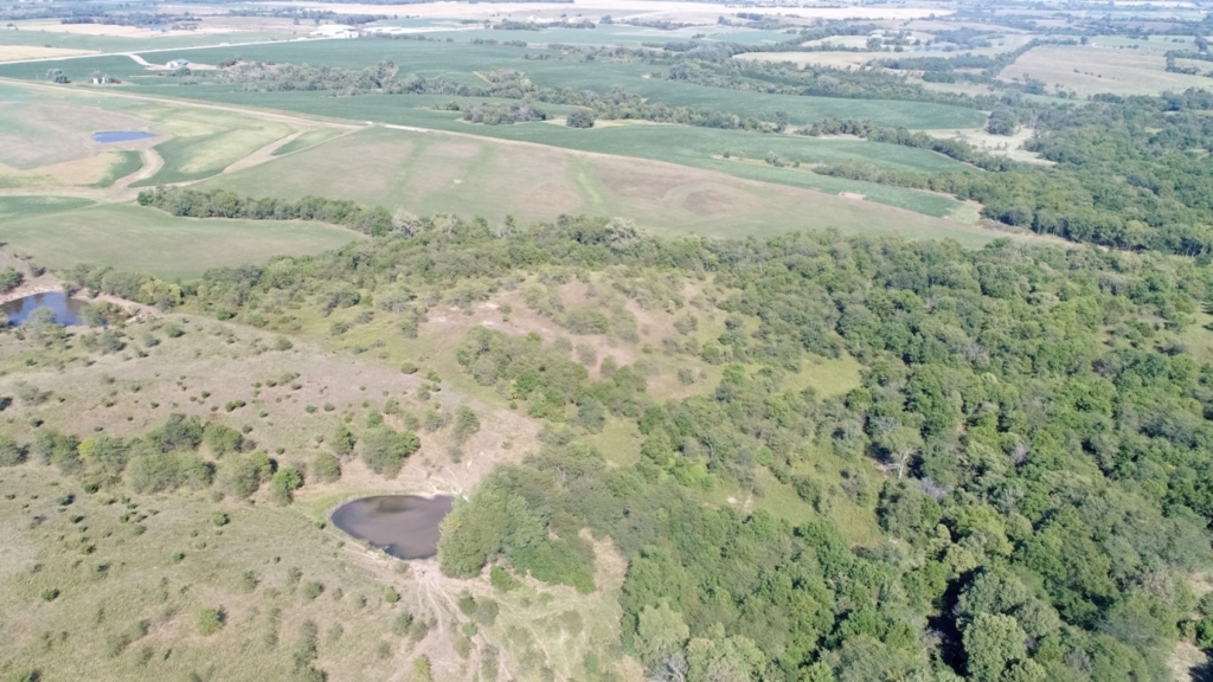 land-lucas-county-iowa-106-acres-listing-number-15133-0-2020-09-04-182128.JPG
