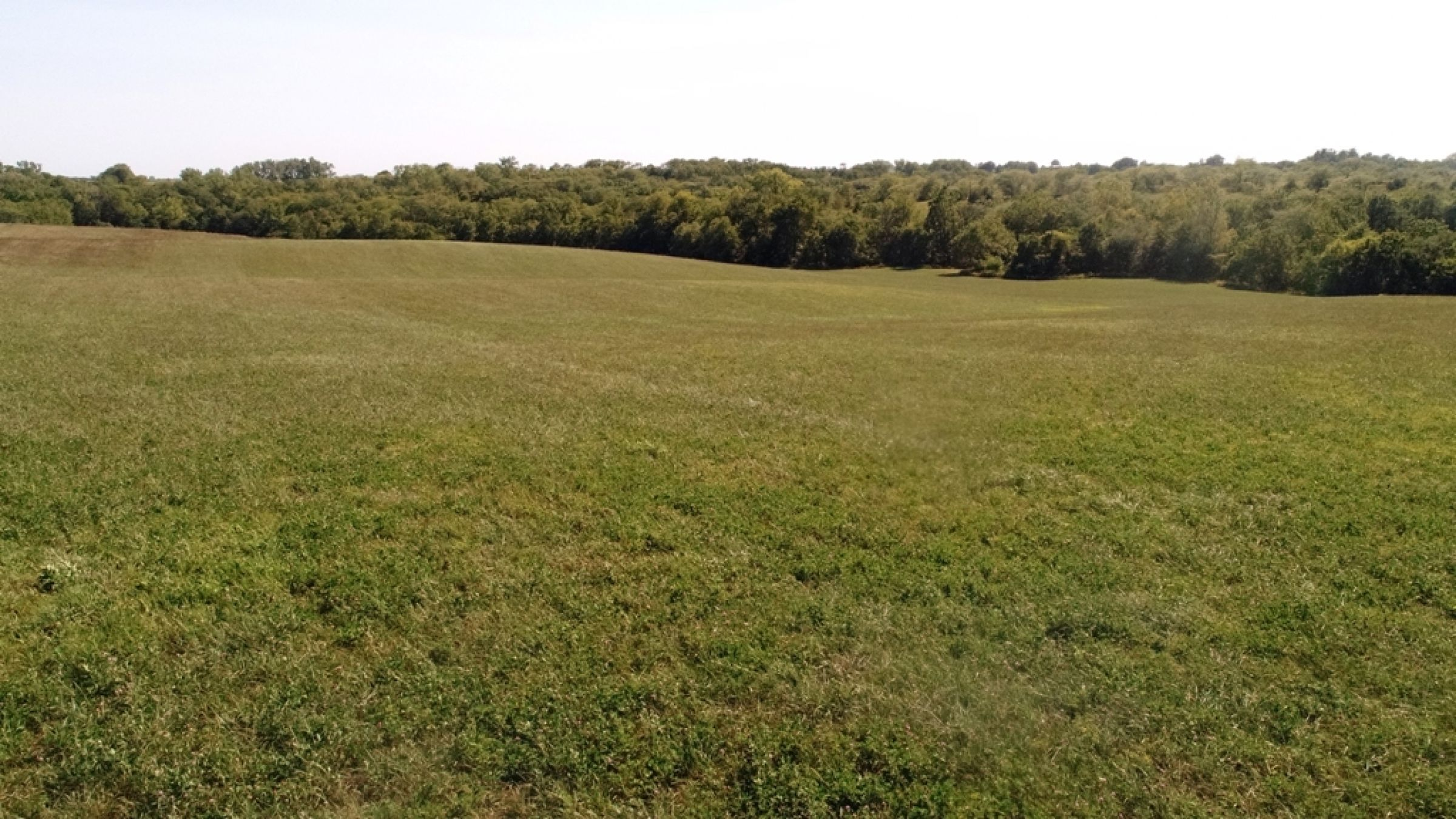 land-lucas-county-iowa-106-acres-listing-number-15133-3-2020-09-04-182129.JPG