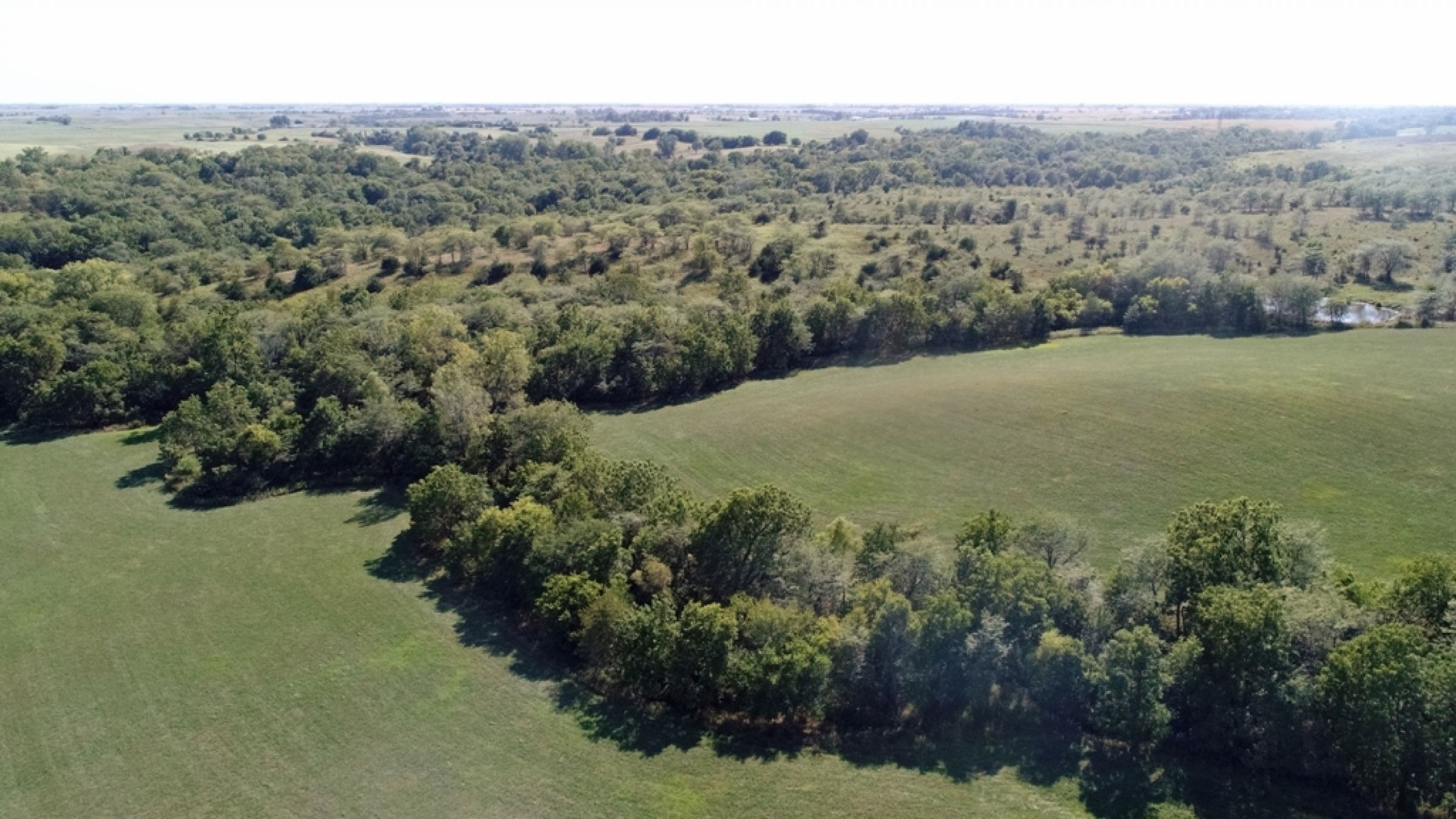 land-lucas-county-iowa-106-acres-listing-number-15133-4-2020-09-04-182130.JPG