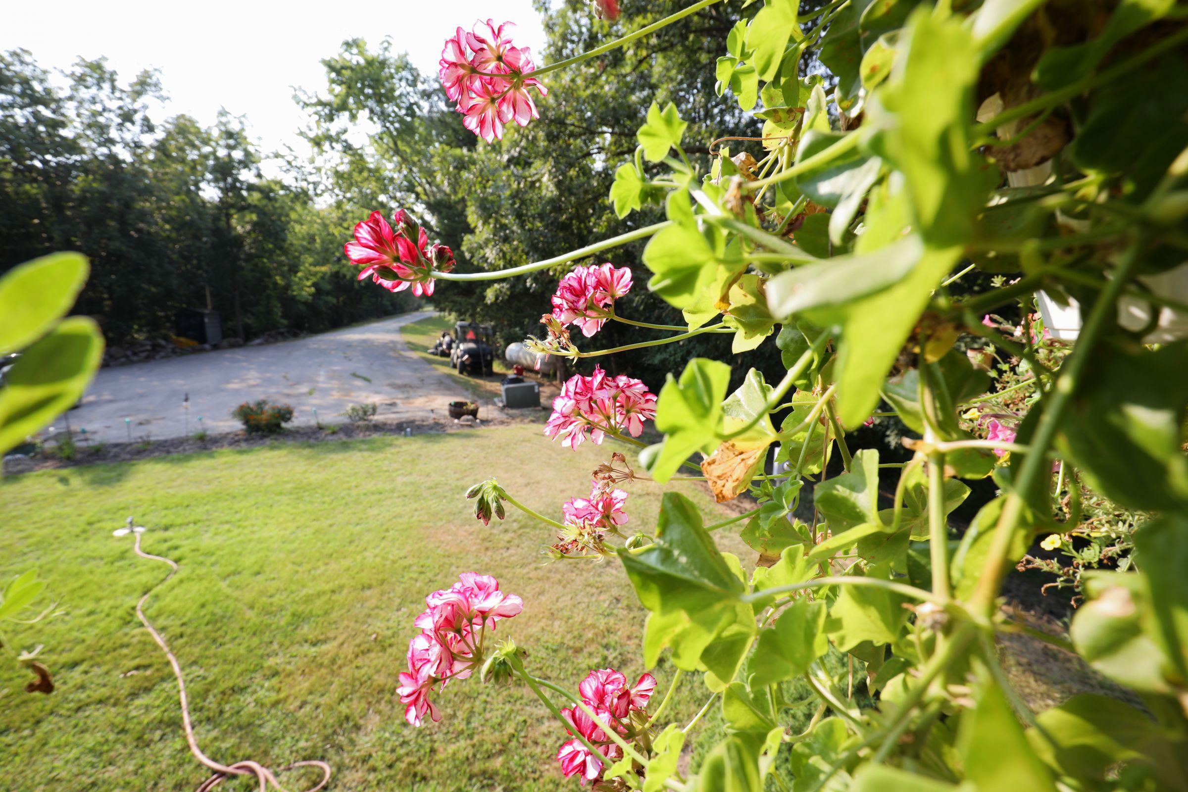 land-lee-county-iowa-328-acres-listing-number-15137-10-2020-08-27-174709.jpg