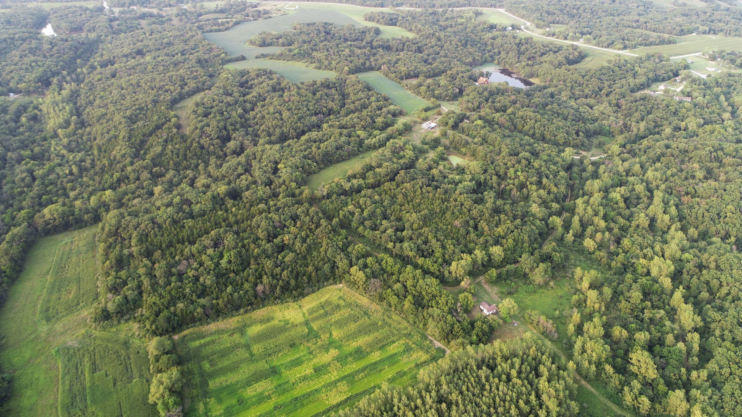 land-lee-county-iowa-328-acres-listing-number-15137-11-2020-08-27-175043.jpg