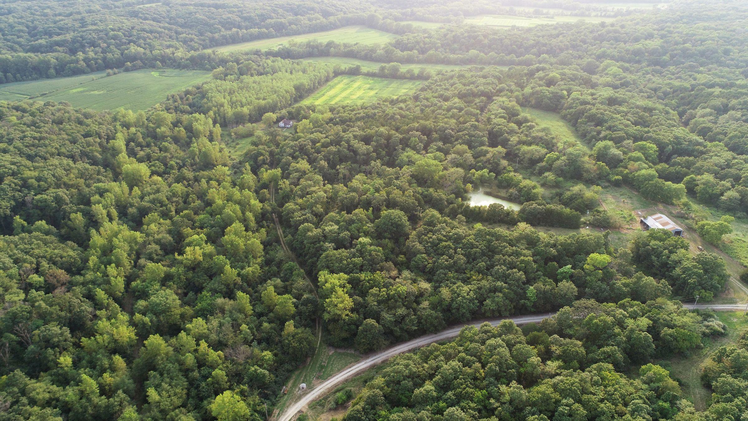 land-lee-county-iowa-328-acres-listing-number-15137-4-2020-08-27-175033.jpg