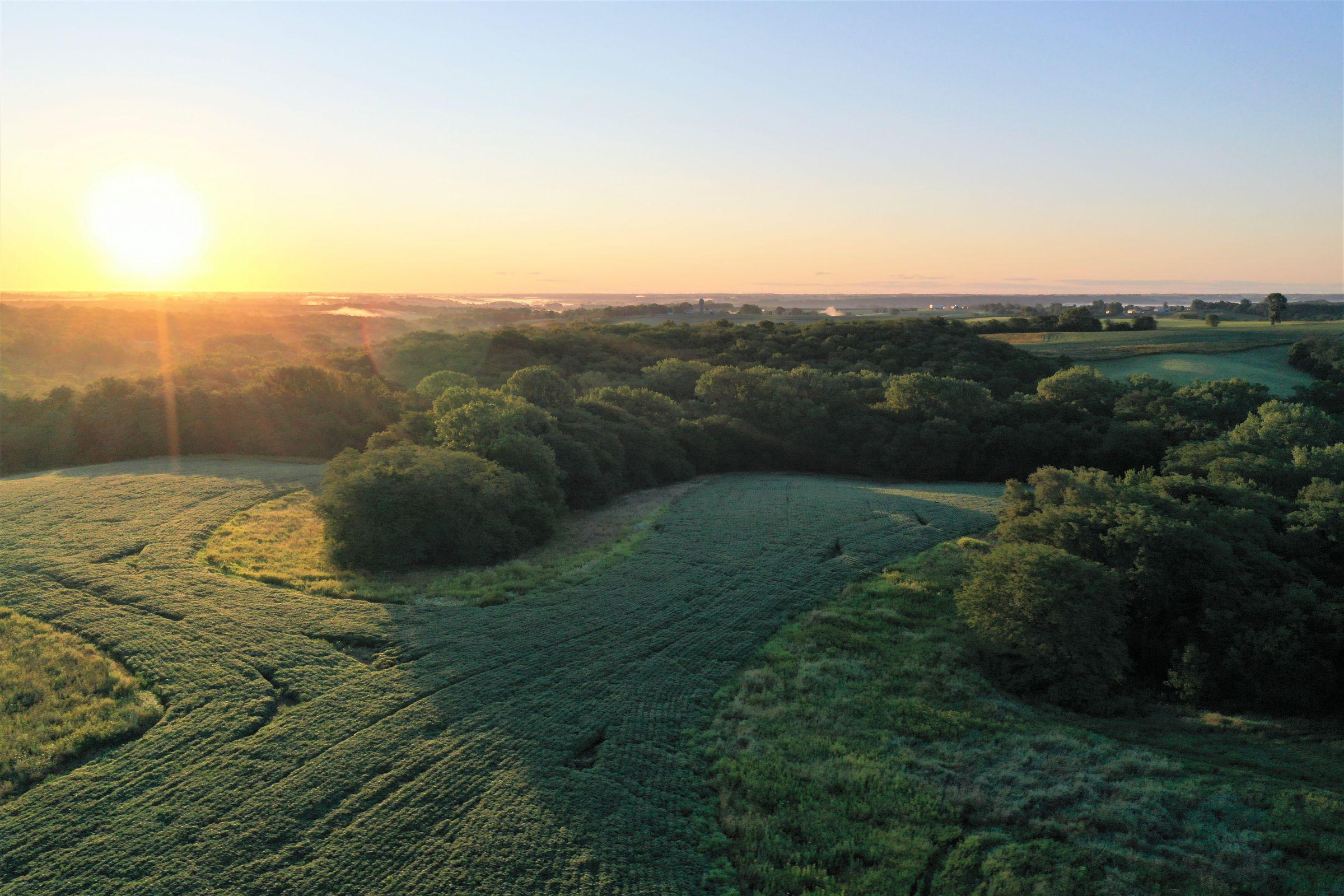 warren-county-iowa-40-acres-listing-number-15145-4-2020-08-28-144300.jpg