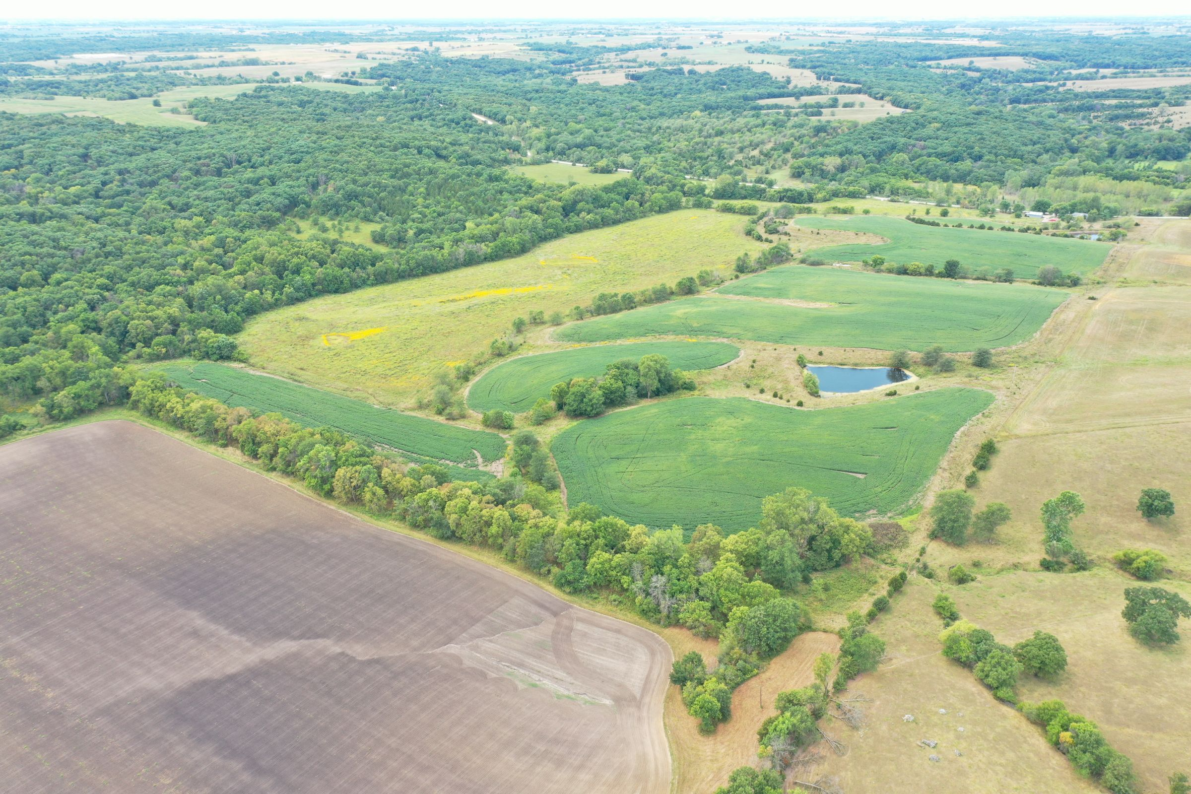 land-clarke-county-iowa-86-acres-listing-number-15147-0-2020-09-02-143250.jpg
