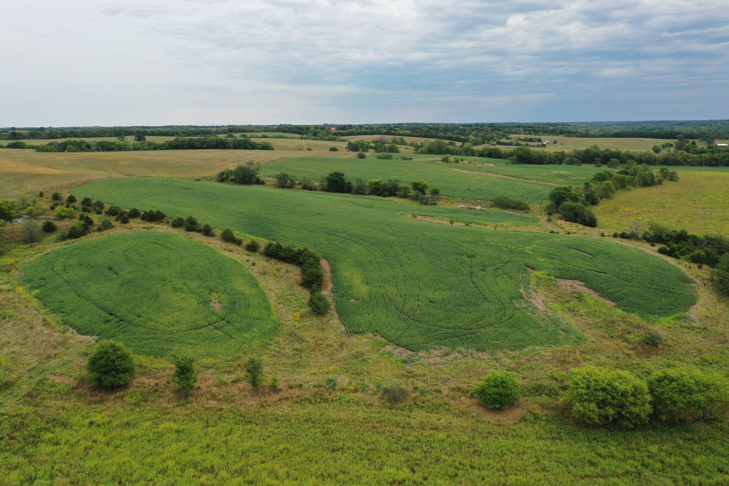 land-clarke-county-iowa-86-acres-listing-number-15147-0-2020-09-02-143355.jpg