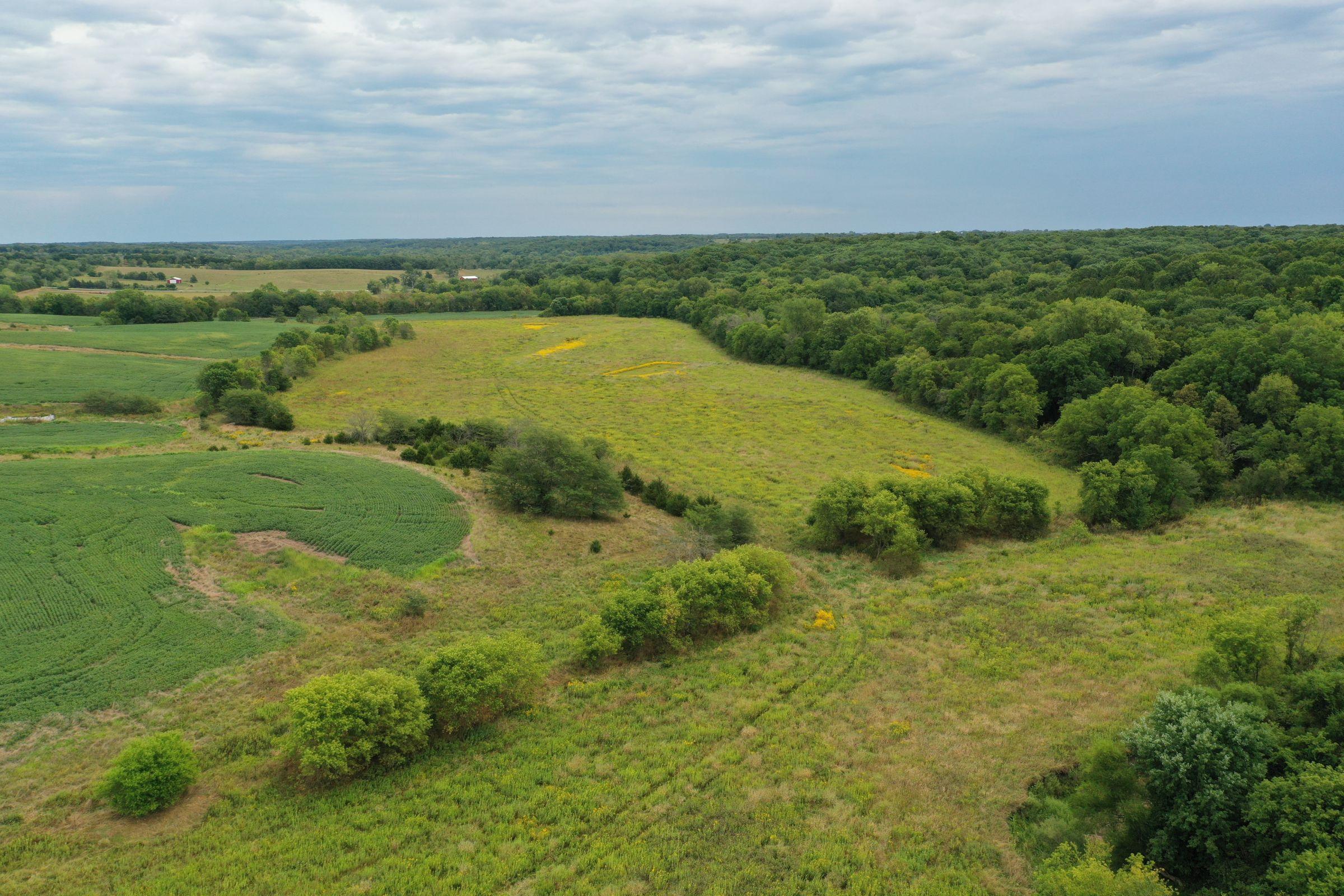 land-clarke-county-iowa-86-acres-listing-number-15147-1-2020-09-02-143253.jpg
