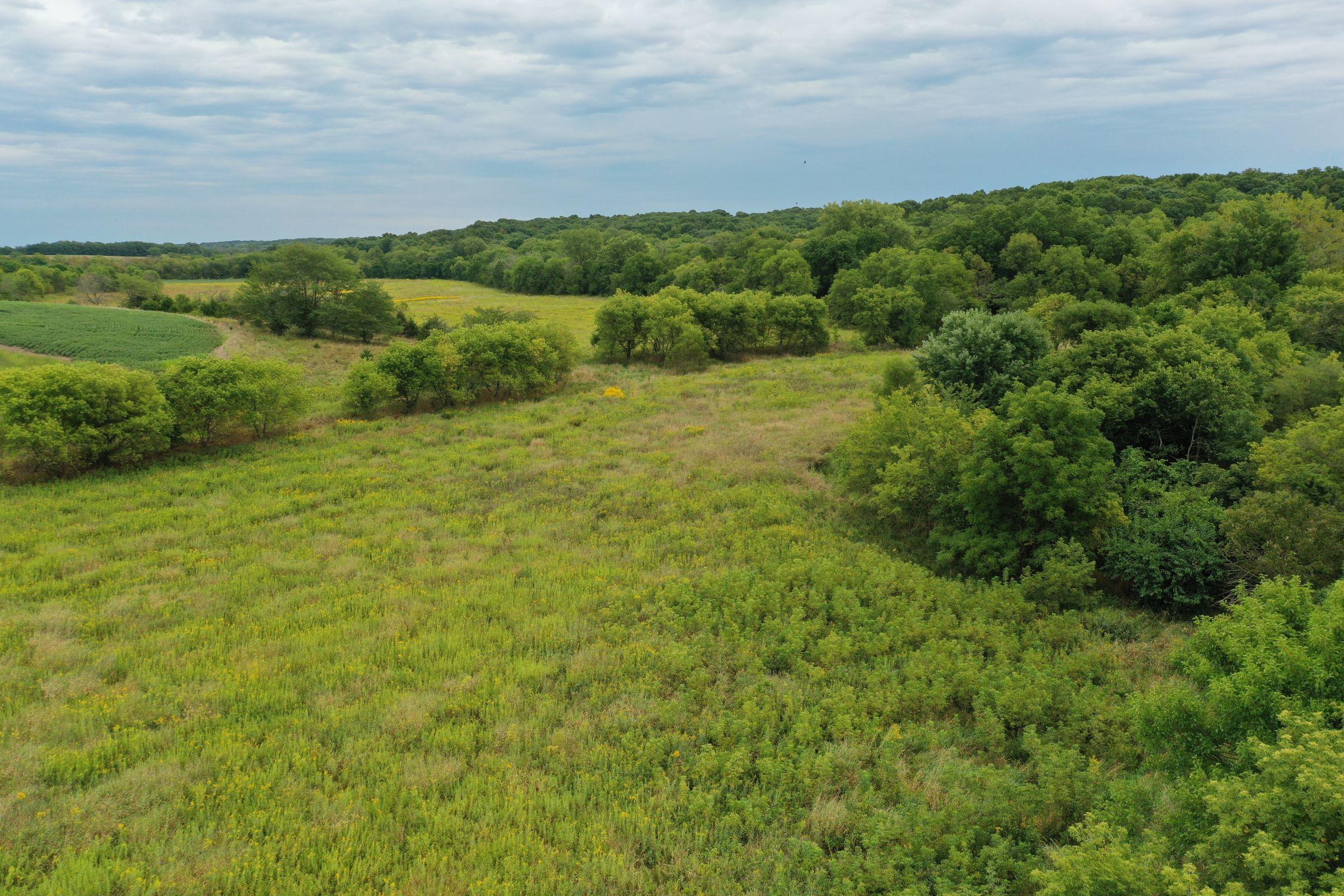 land-clarke-county-iowa-86-acres-listing-number-15147-2-2020-09-02-143151.jpg