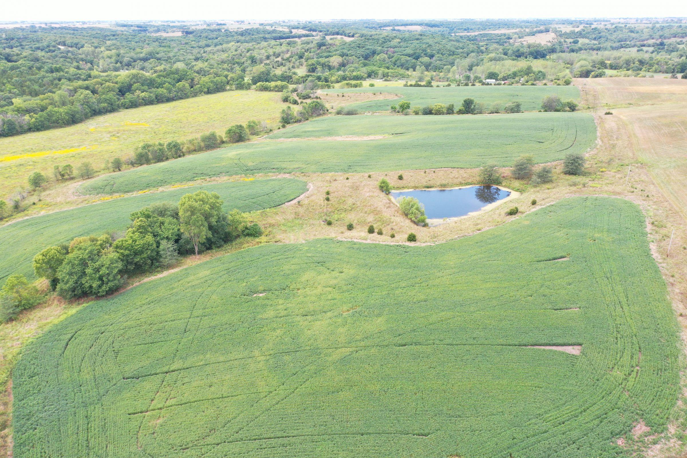 land-clarke-county-iowa-86-acres-listing-number-15147-2-2020-09-02-143404.jpg