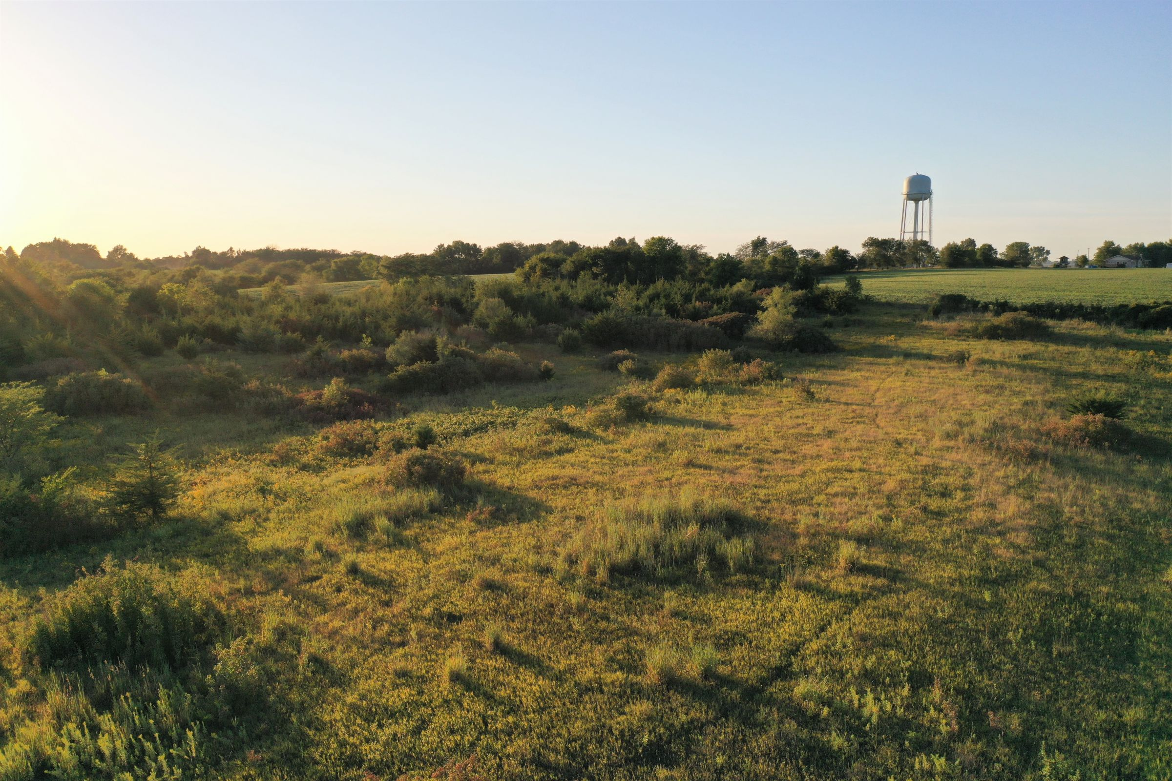 auctions-warren-county-iowa-84-acres-listing-number-15156-0-2020-09-02-043220.jpg