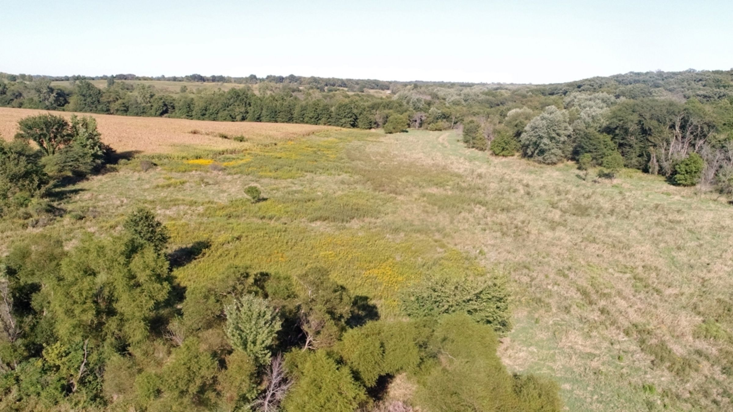 land-lucas-county-iowa-0-acres-listing-number-15164-7-2020-09-08-170338.JPG