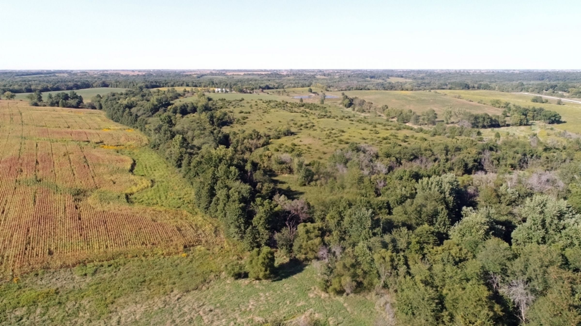 land-lucas-county-iowa-0-acres-listing-number-15164-8-2020-09-08-170338.JPG