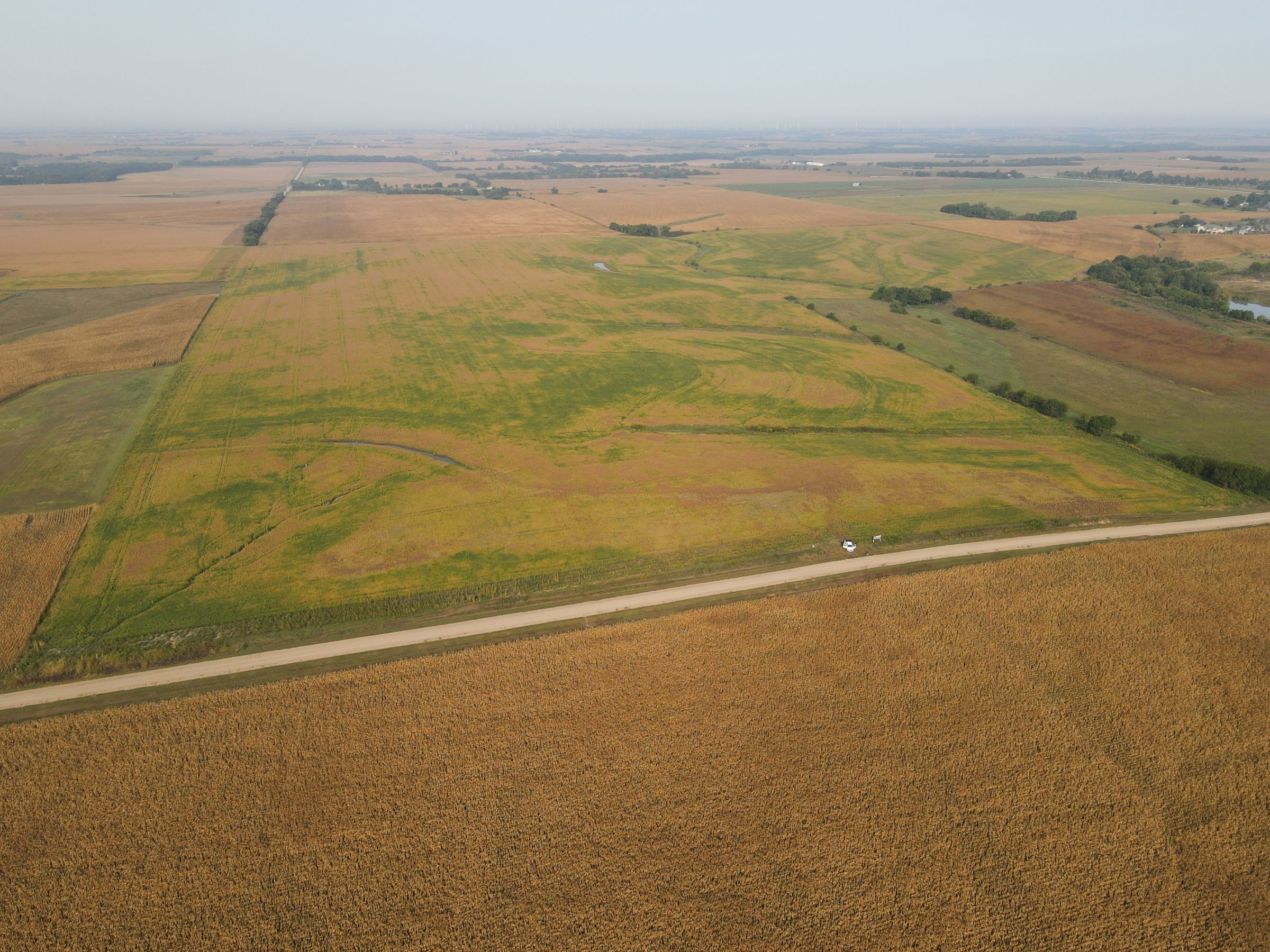 land-saline-county-nebraska-116-acres-listing-number-15166-0-2020-09-16-190237.JPG