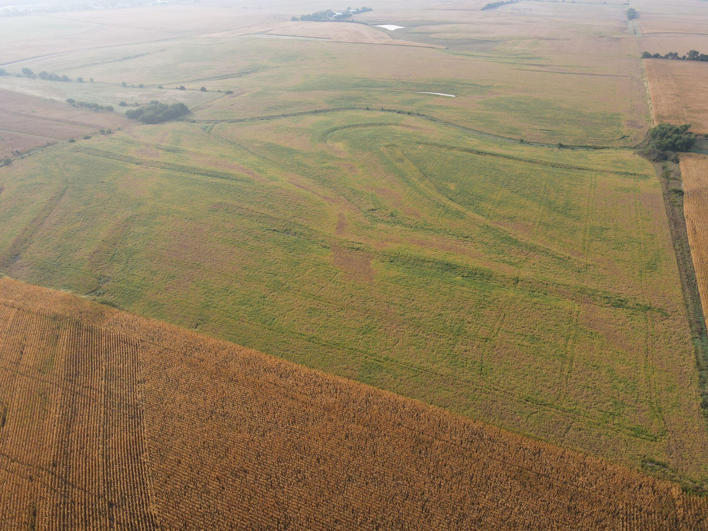 land-saline-county-nebraska-116-acres-listing-number-15166-0-2020-09-21-155040.JPG