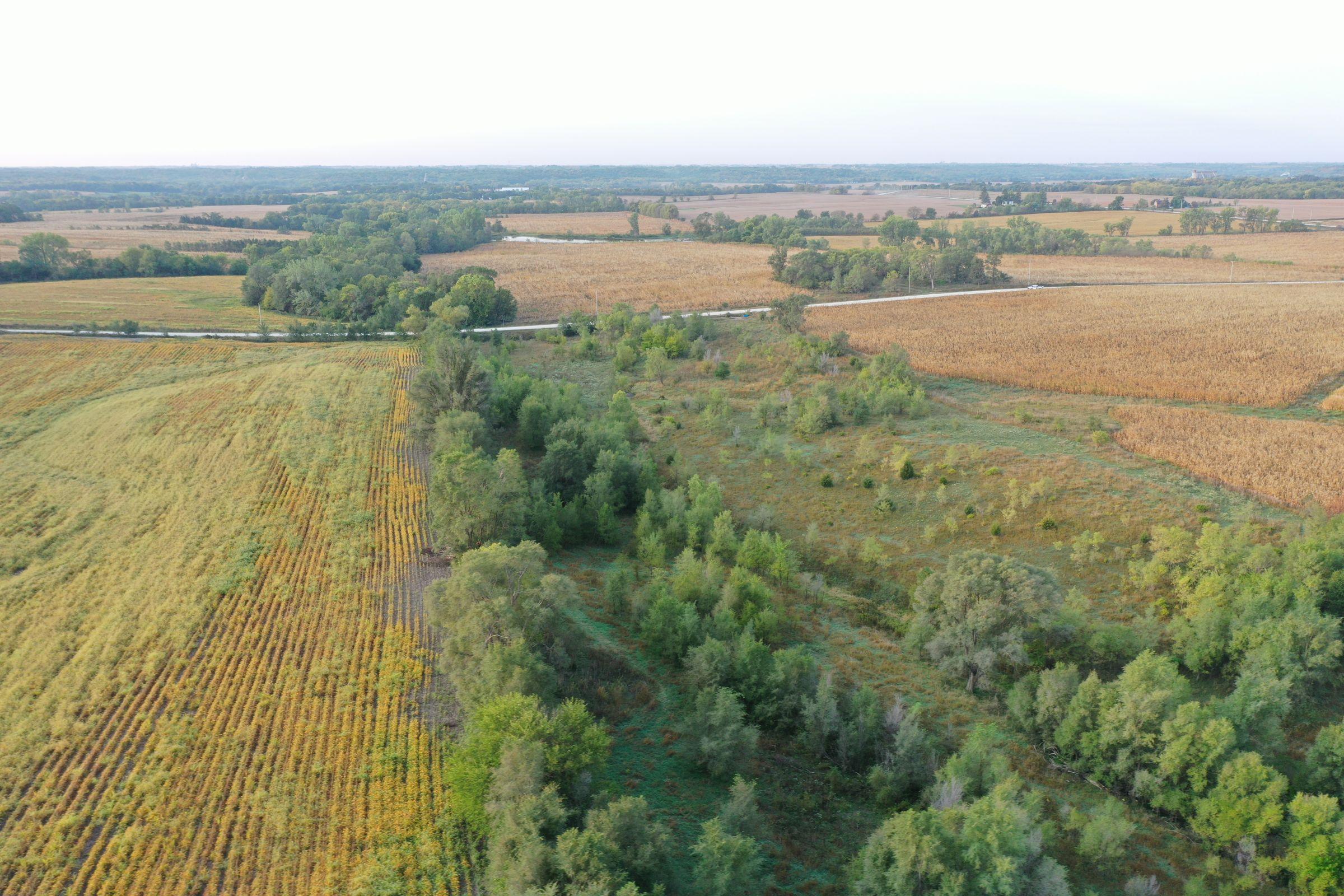 Dallas County Iowa Farmland for Sale