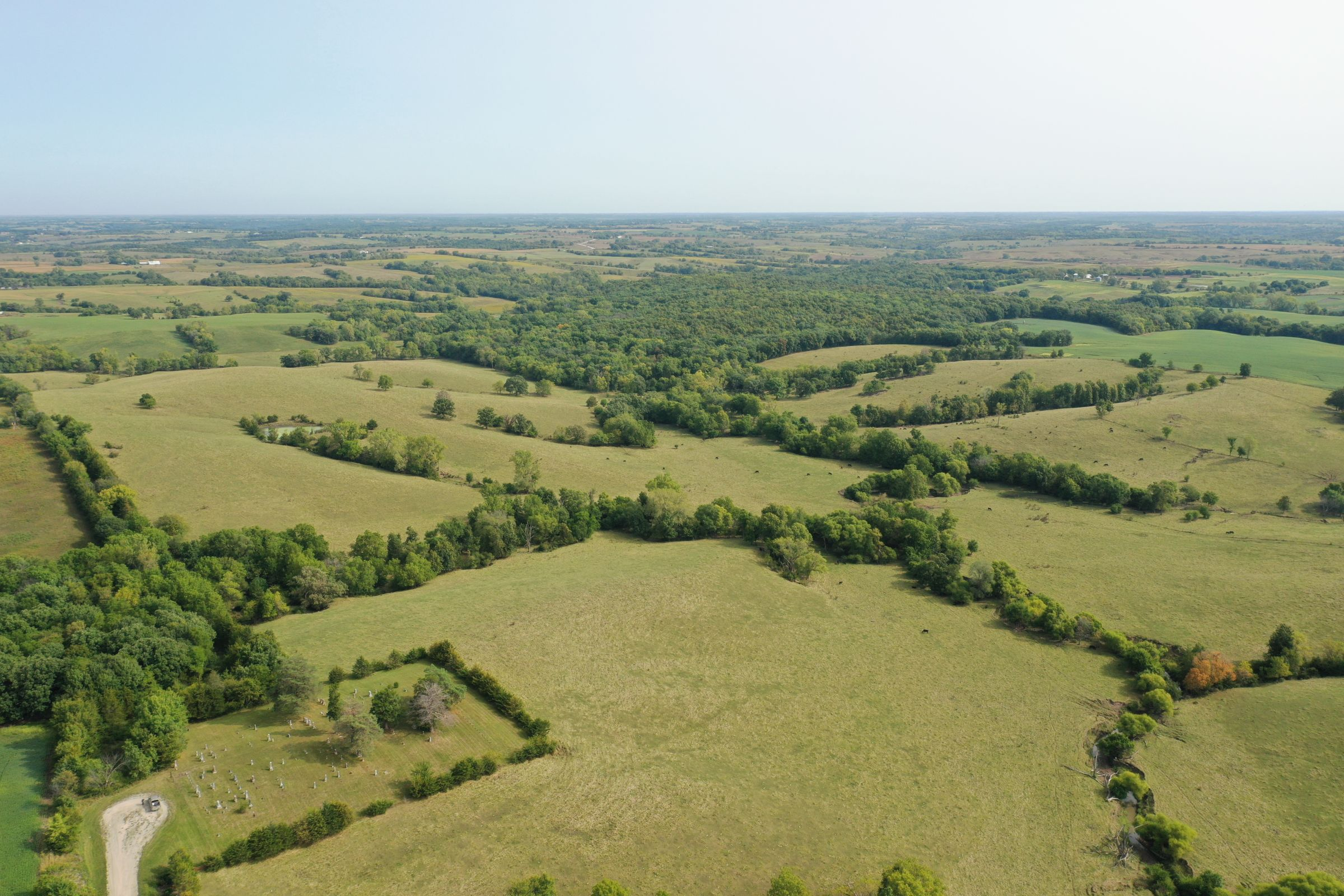 land-clarke-county-iowa-196-acres-listing-number-15176-1-2020-09-16-222320.jpg