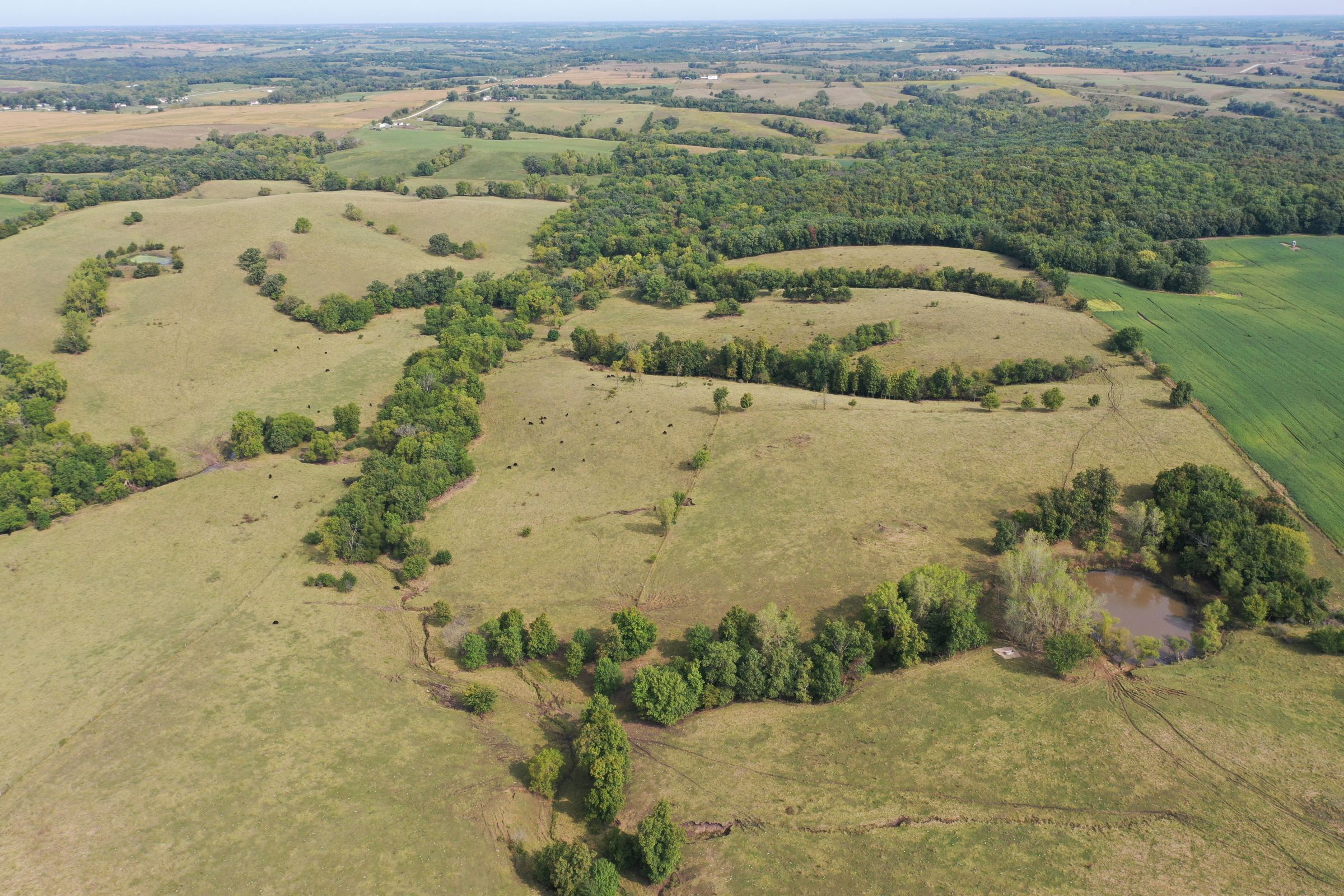 land-clarke-county-iowa-196-acres-listing-number-15176-4-2020-09-16-222324.jpg