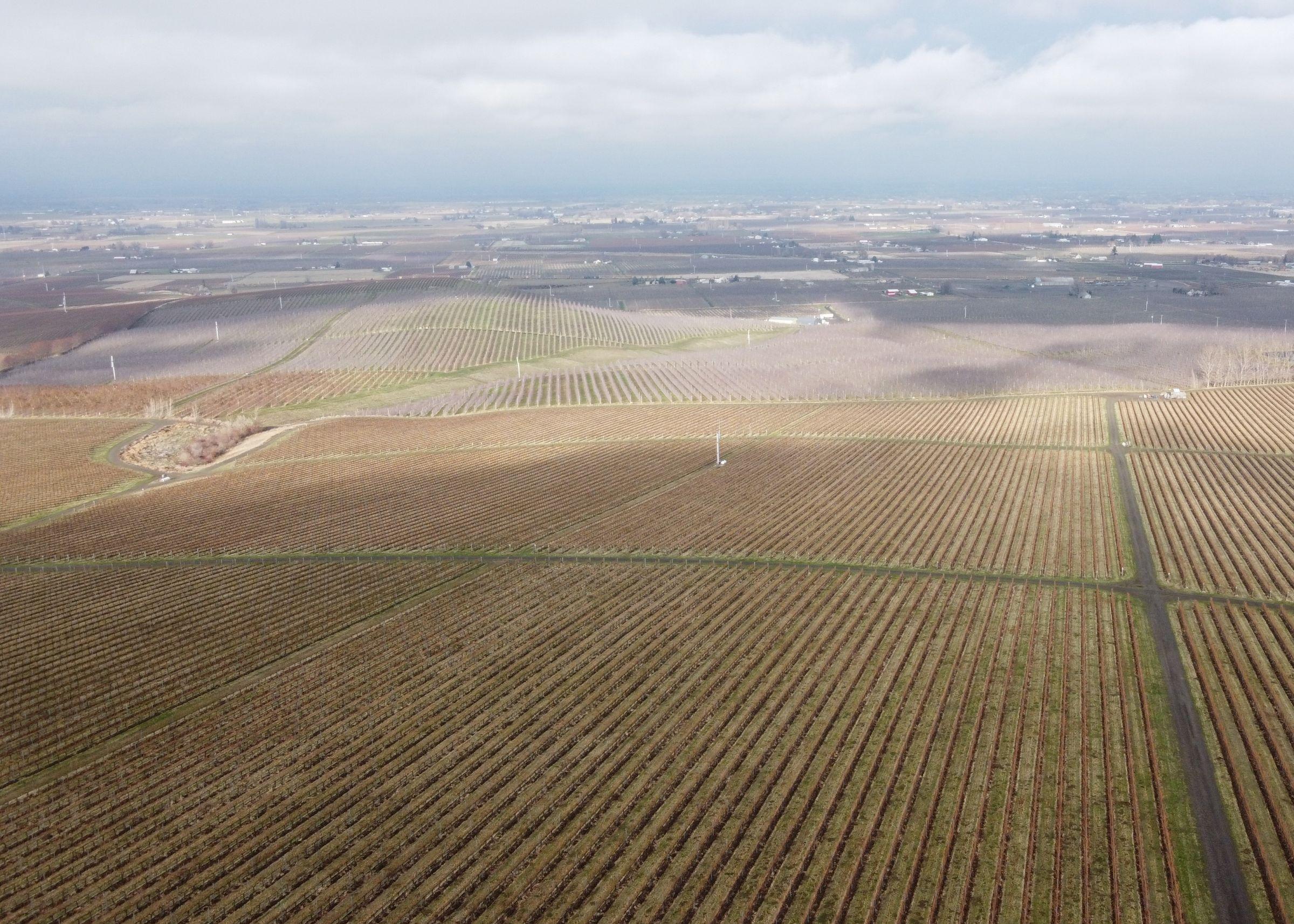 residential-land-polk-county-oregon-65-acres-listing-number-15179-2-2021-03-10-153752.JPG