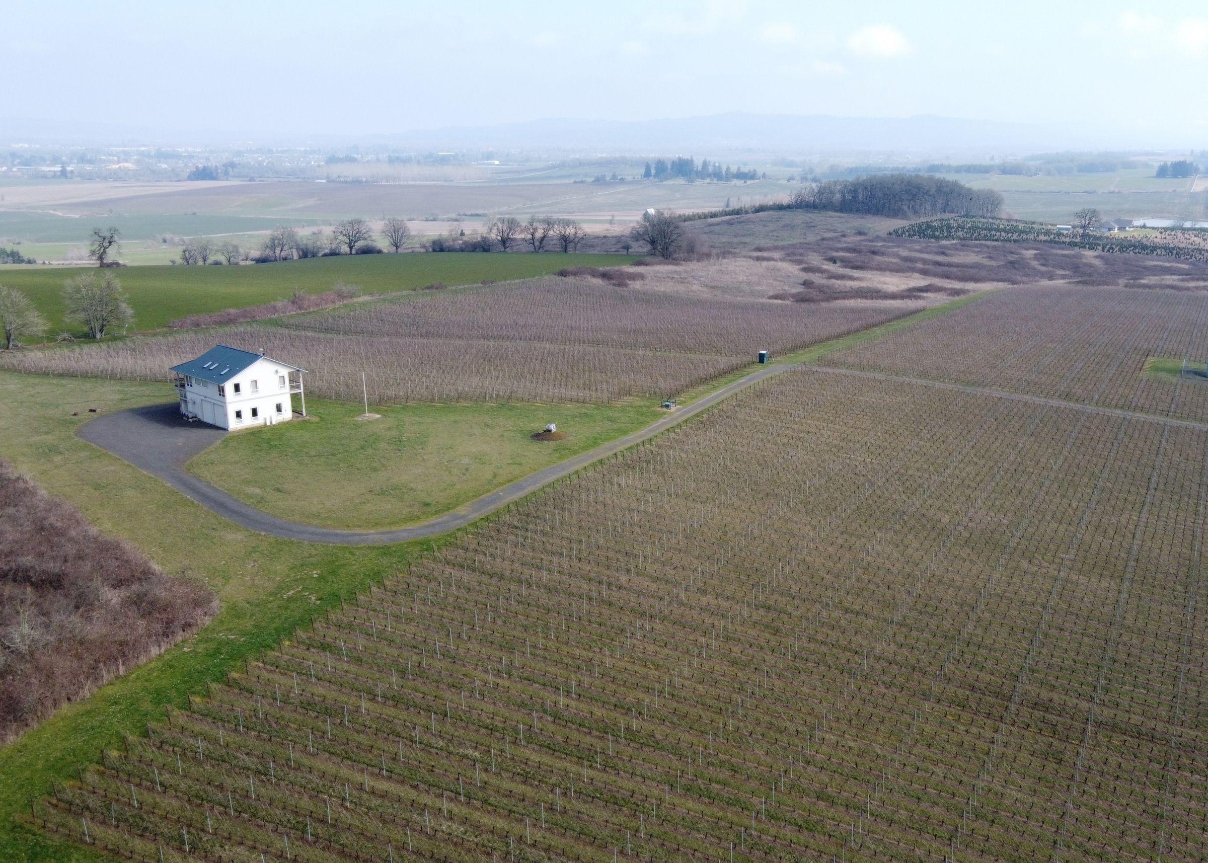 residential-land-polk-county-oregon-65-acres-listing-number-15179-3-2021-03-10-153753.JPG